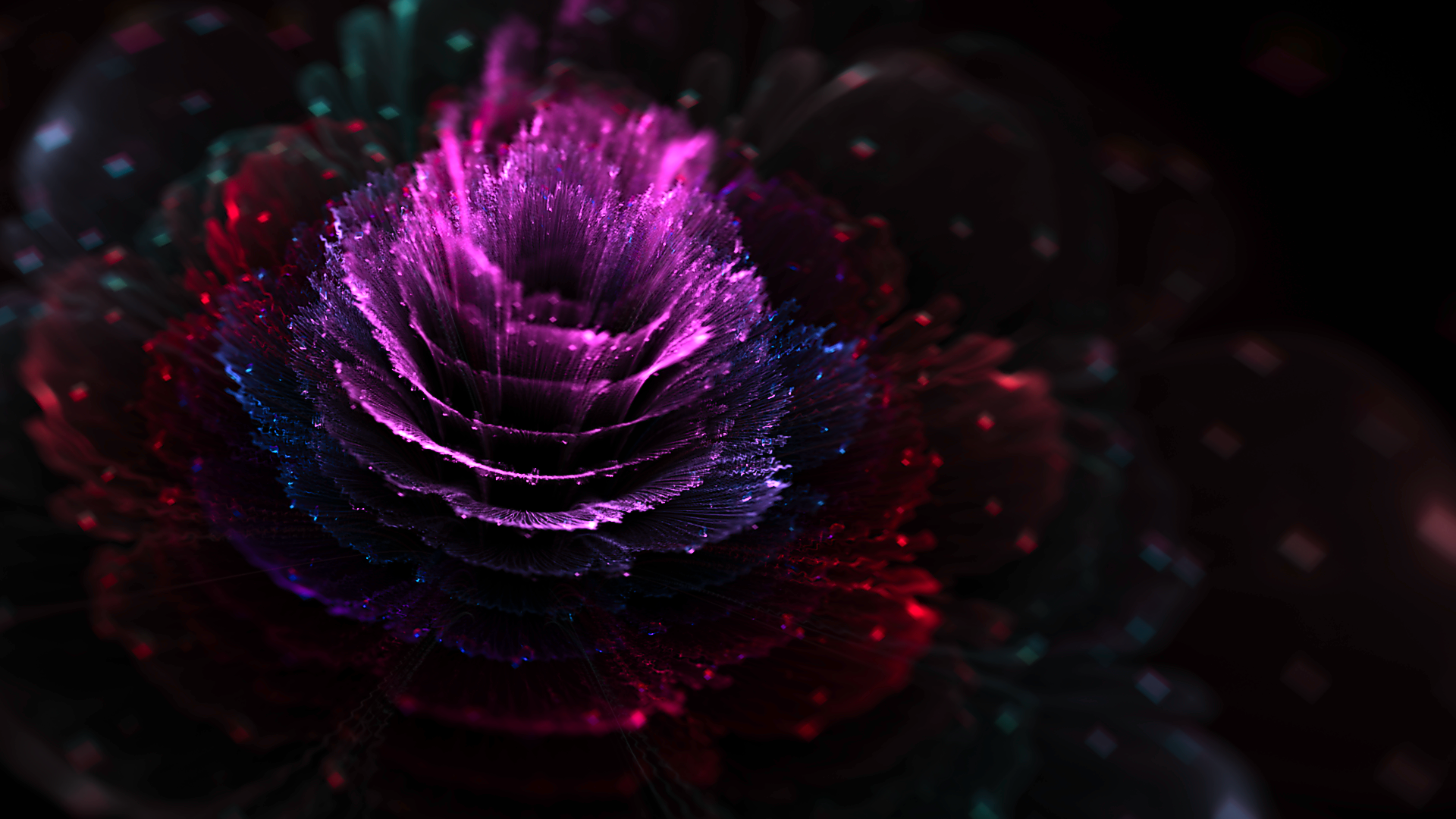 Artistic Flower Purple 1920x1080