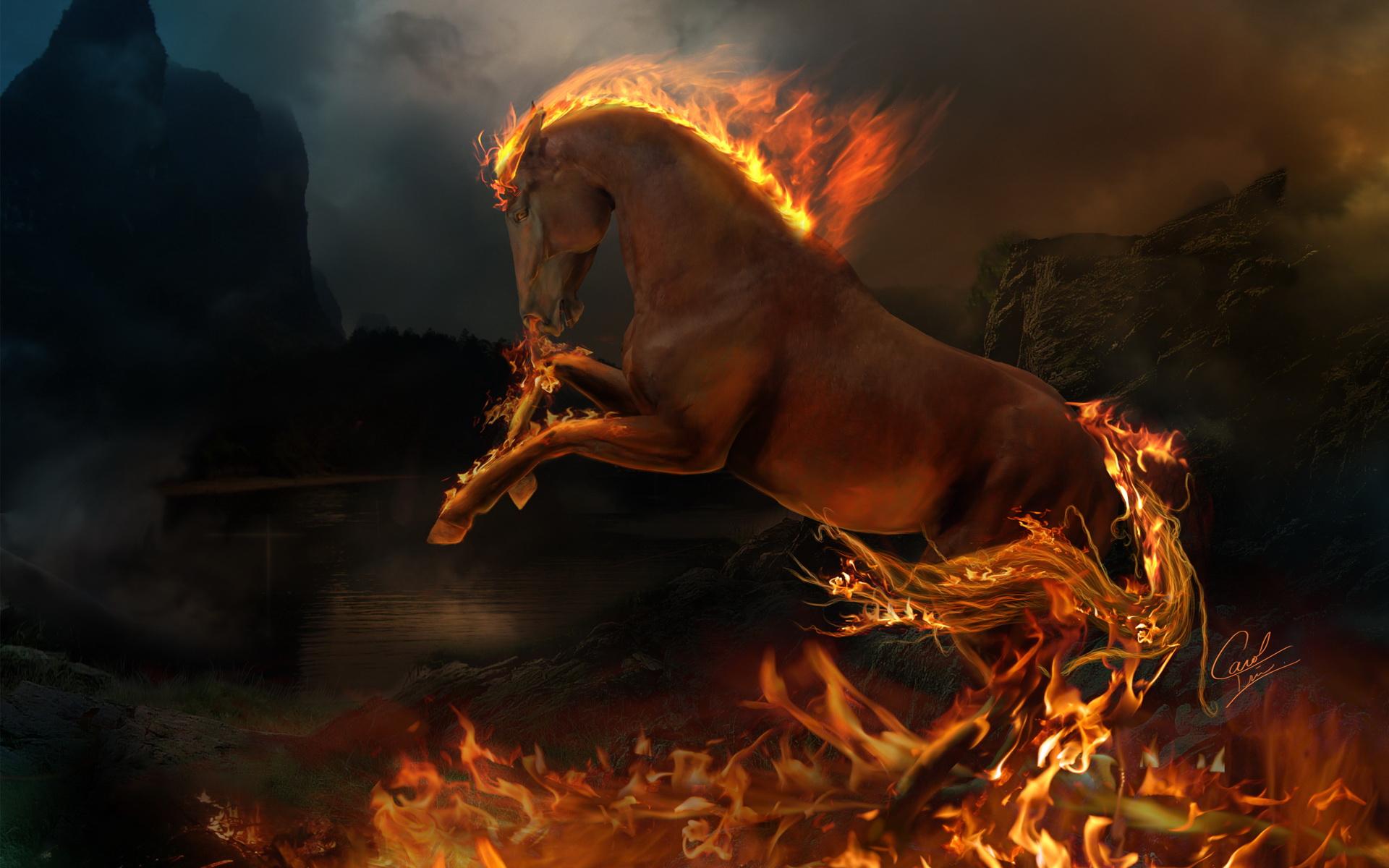 Animal Artistic Dark Fantasy Fire Flame Horse Pokemon Rapidash 1920x1200