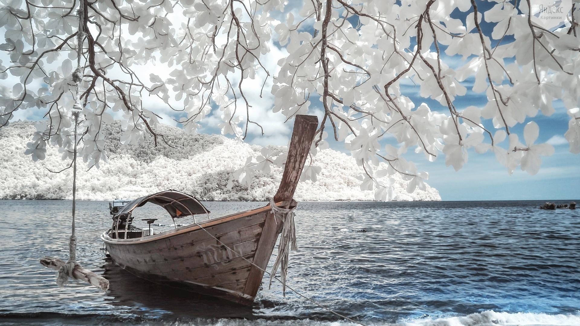 Boat Horizon Ocean 1920x1080