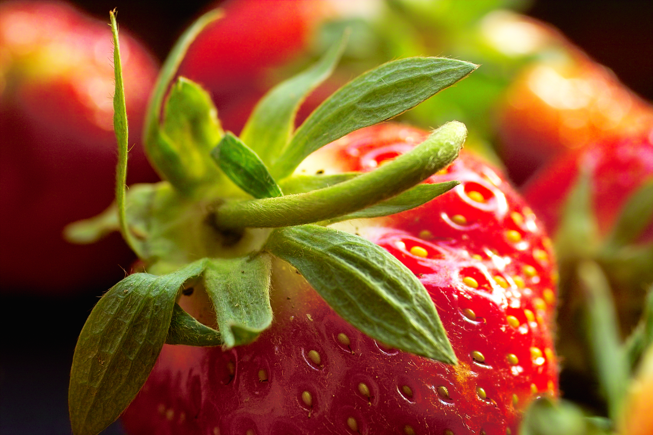 Food Fruit Strawberry 2268x1512