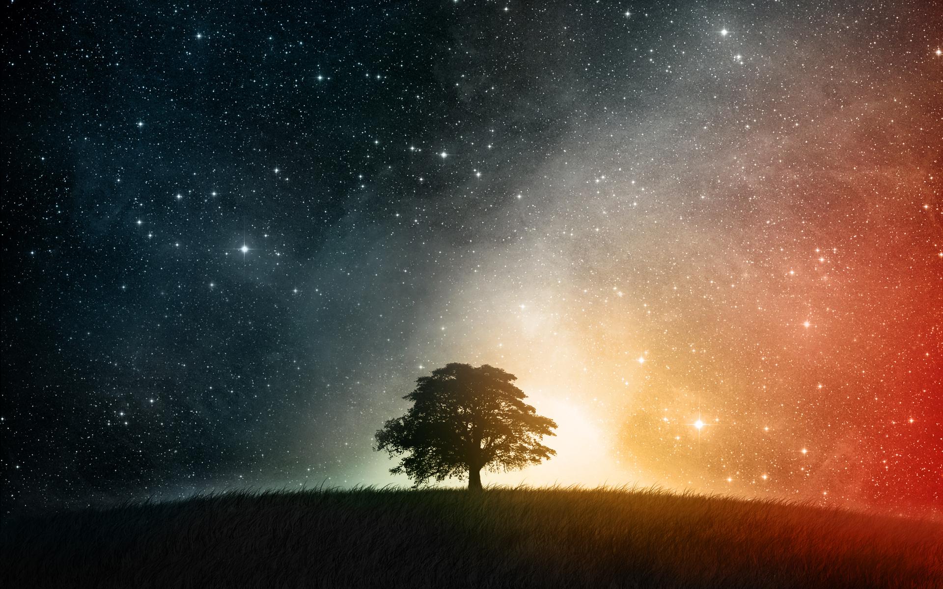 Grass Landscape Sky Space Stars Tree 1920x1200