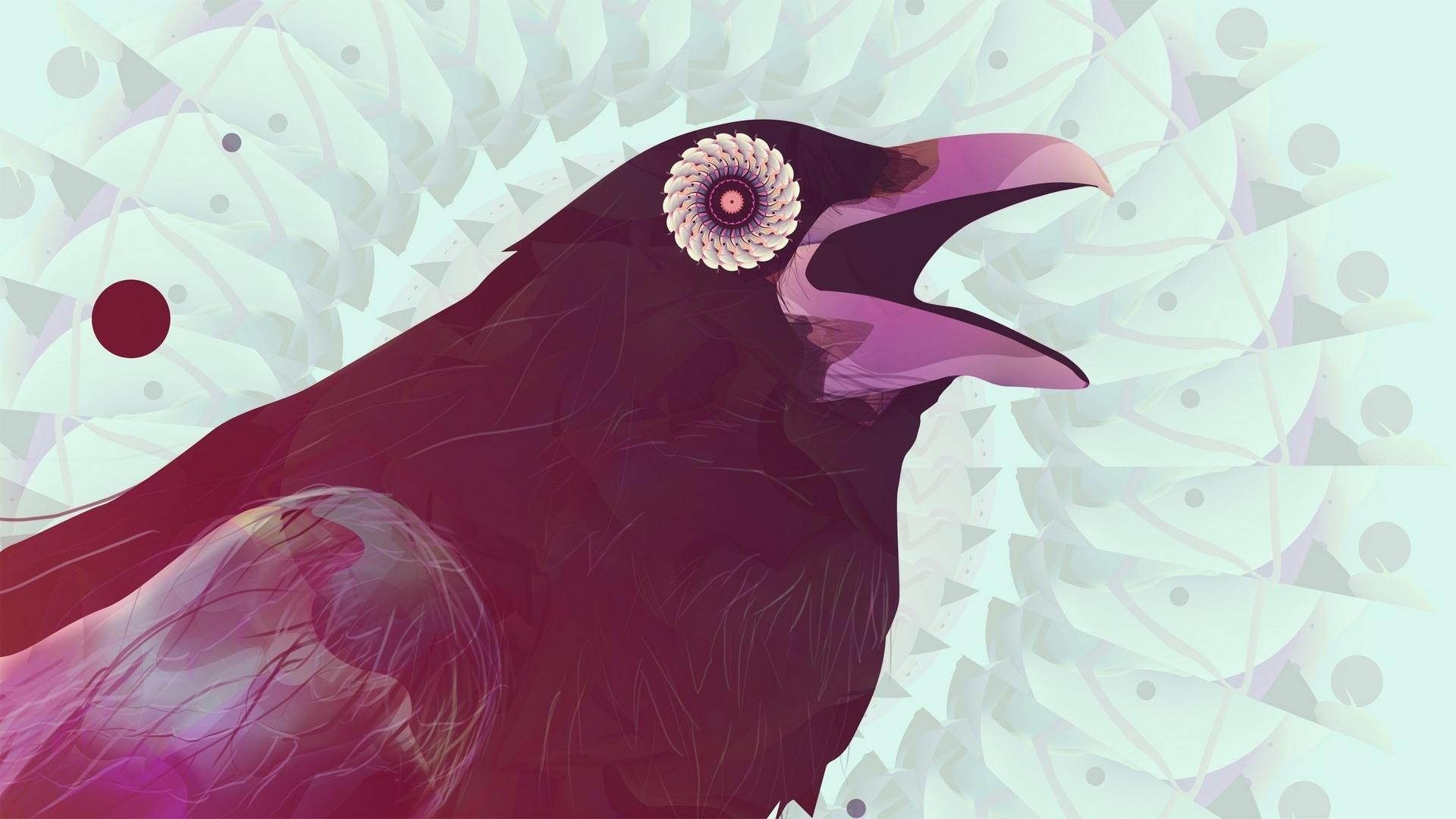 Animal Raven 1920x1080