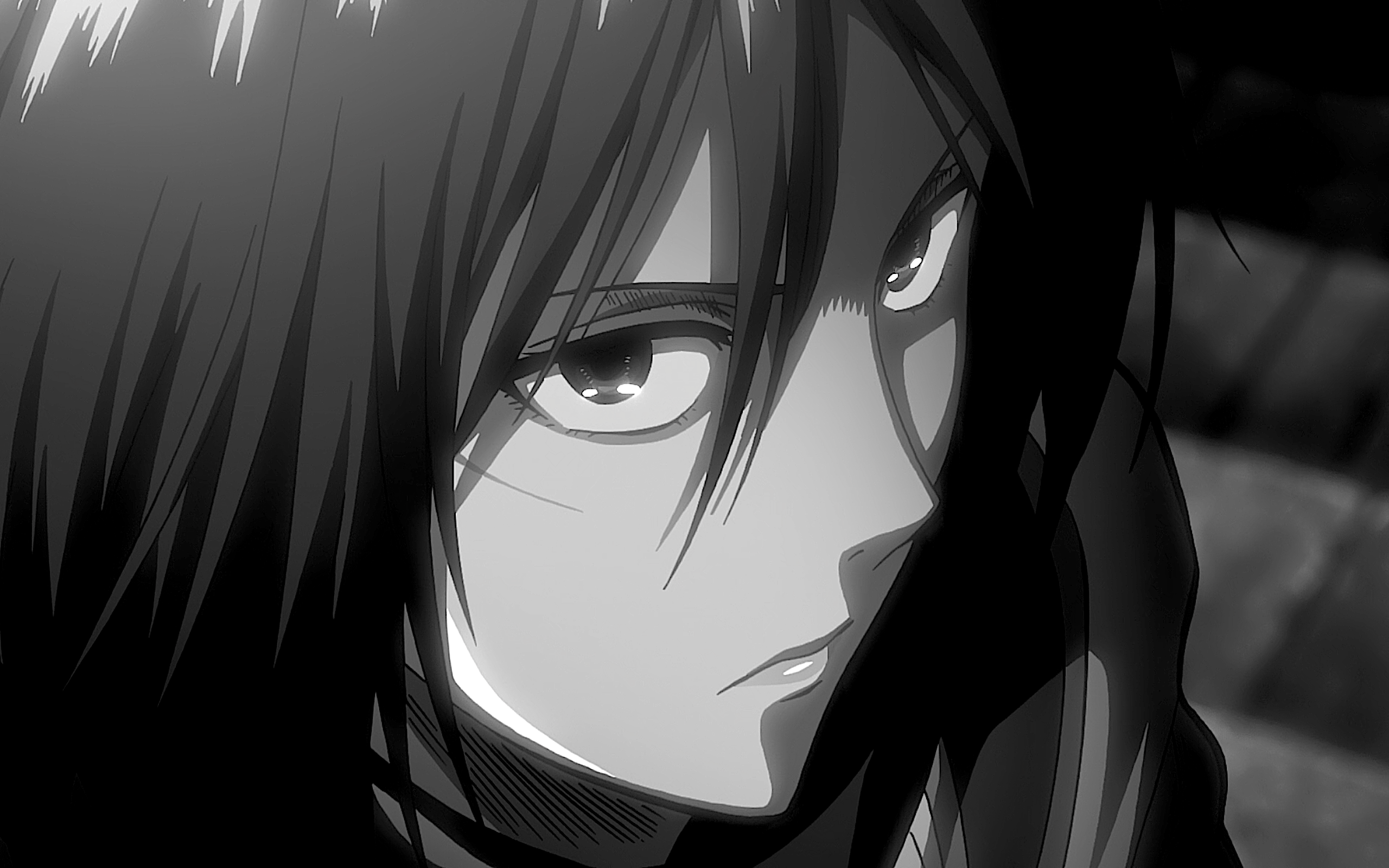 Attack On Titan Black Amp White Mikasa Ackerman Shingeki No Kyojin Wallpaper Resolution 2560x1600 Id 1035359 Wallha Com