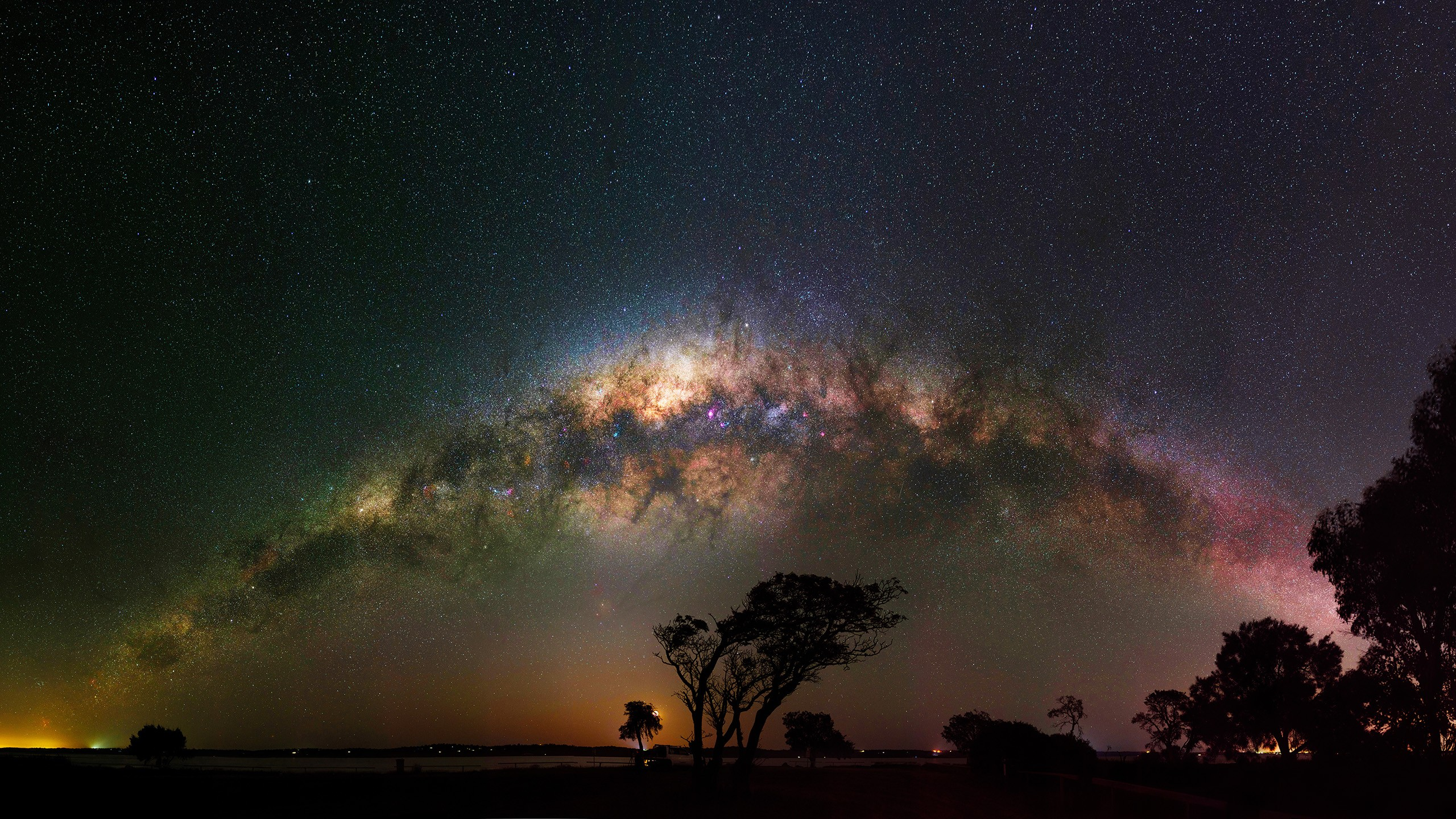 Milky Way Night Sky Starry Sky Stars Tree 2560x1440