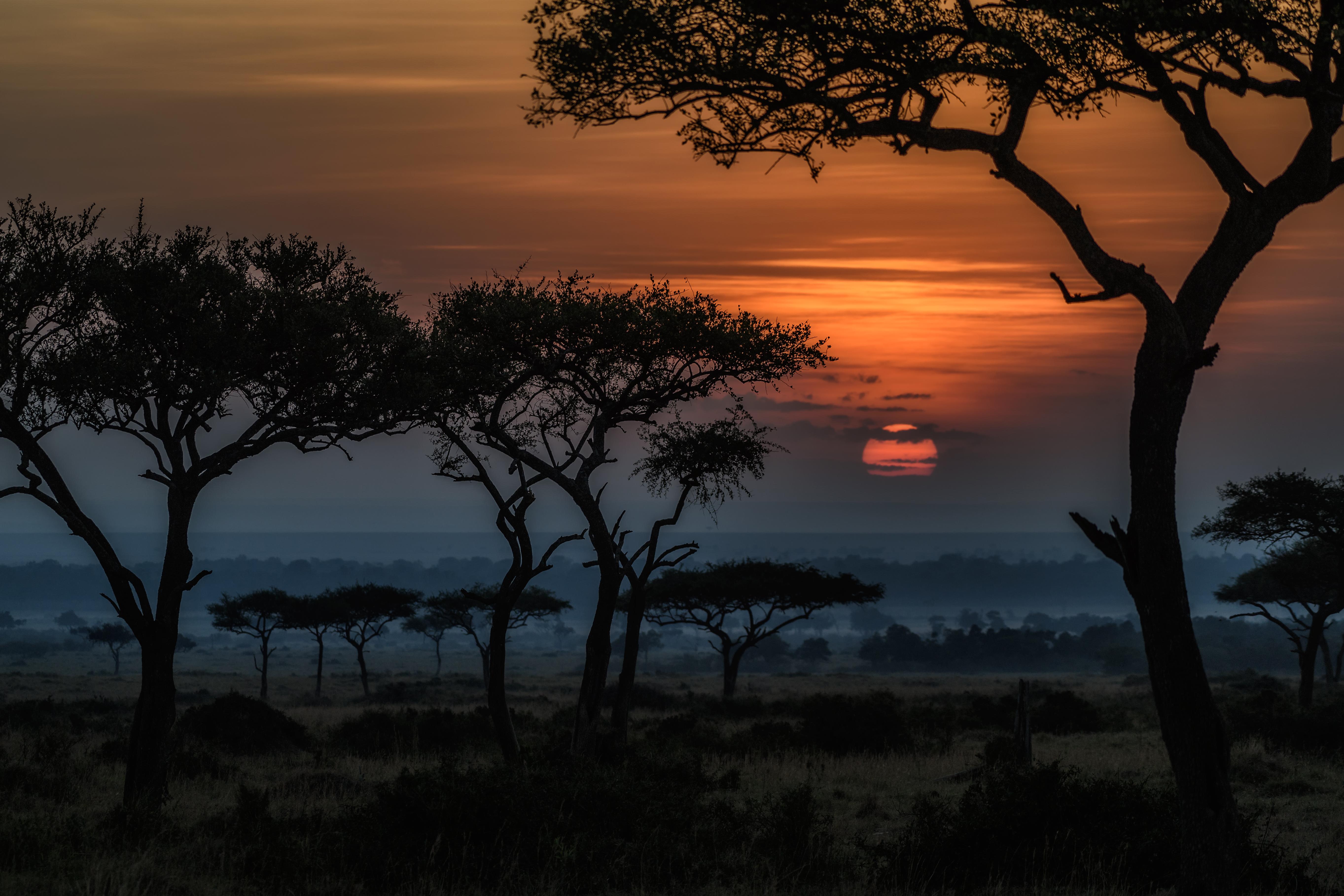 Africa Dawn Kenia Landscape Savannah Sunrise Tree 5452x3635