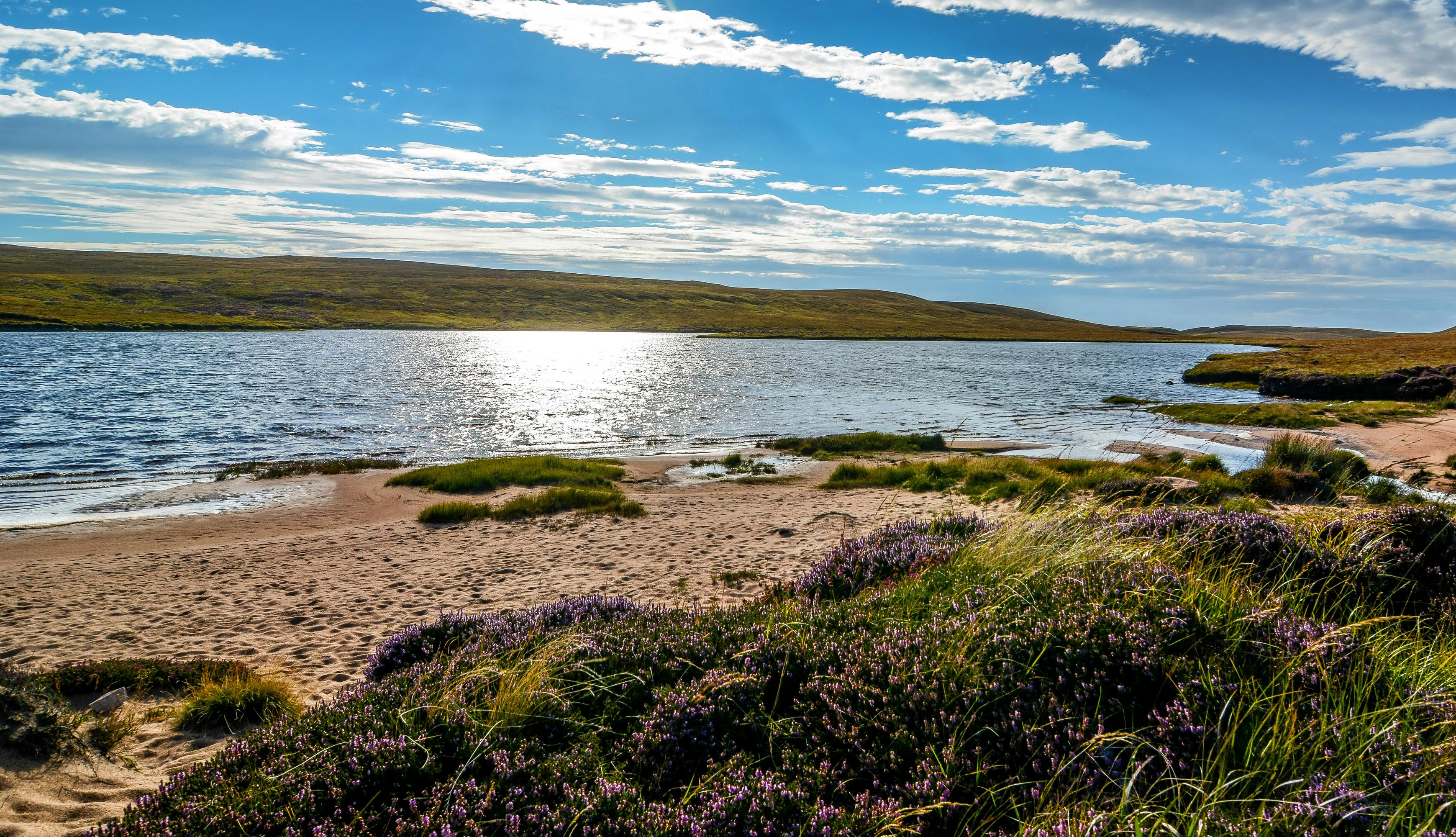 Grass Lake Landscape Nature Scotland 3480x2000