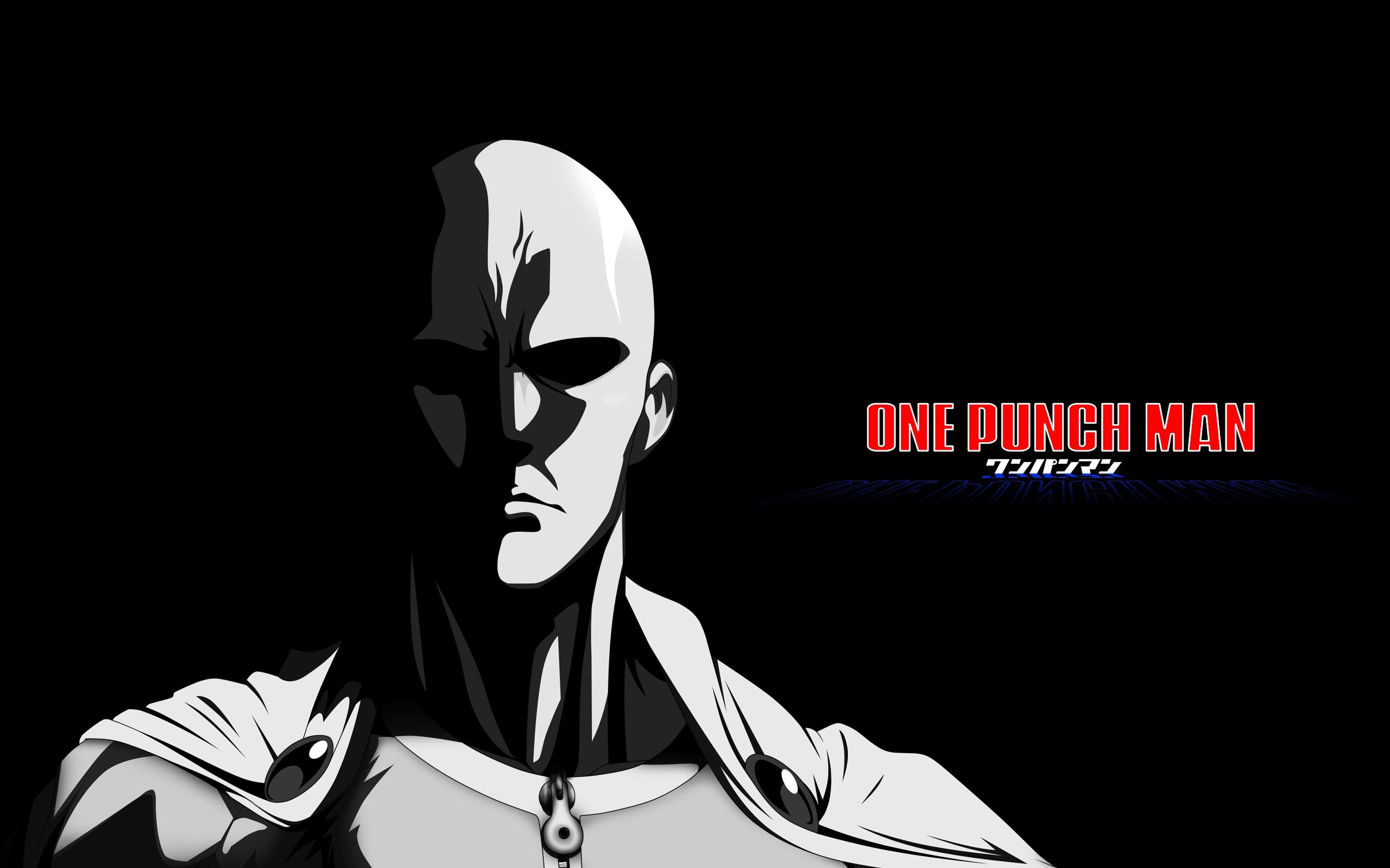One Punch Man Saitama One Punch Man 2560x1600