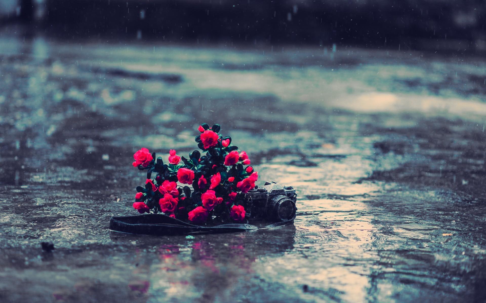 Photography Rain 1920x1200