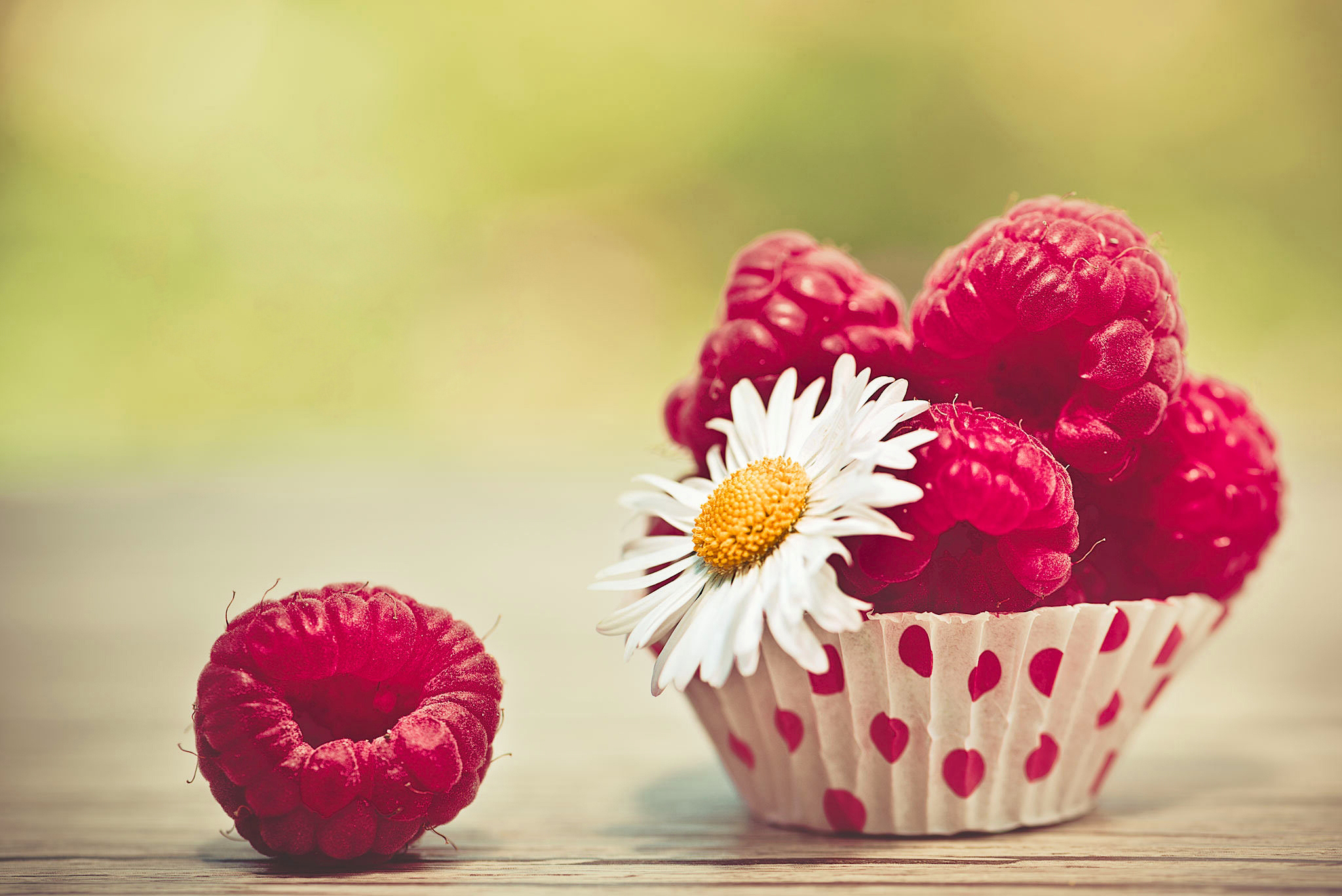 Berry Close Up Fruit Raspberry 2048x1367
