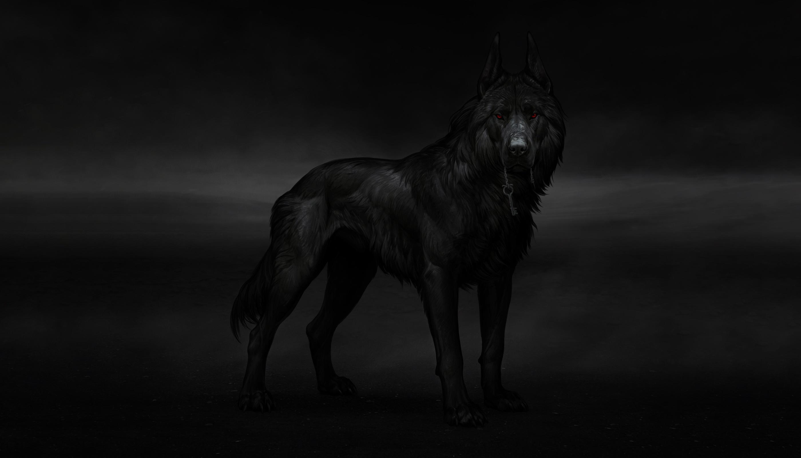 Animal Wolf 2800x1602