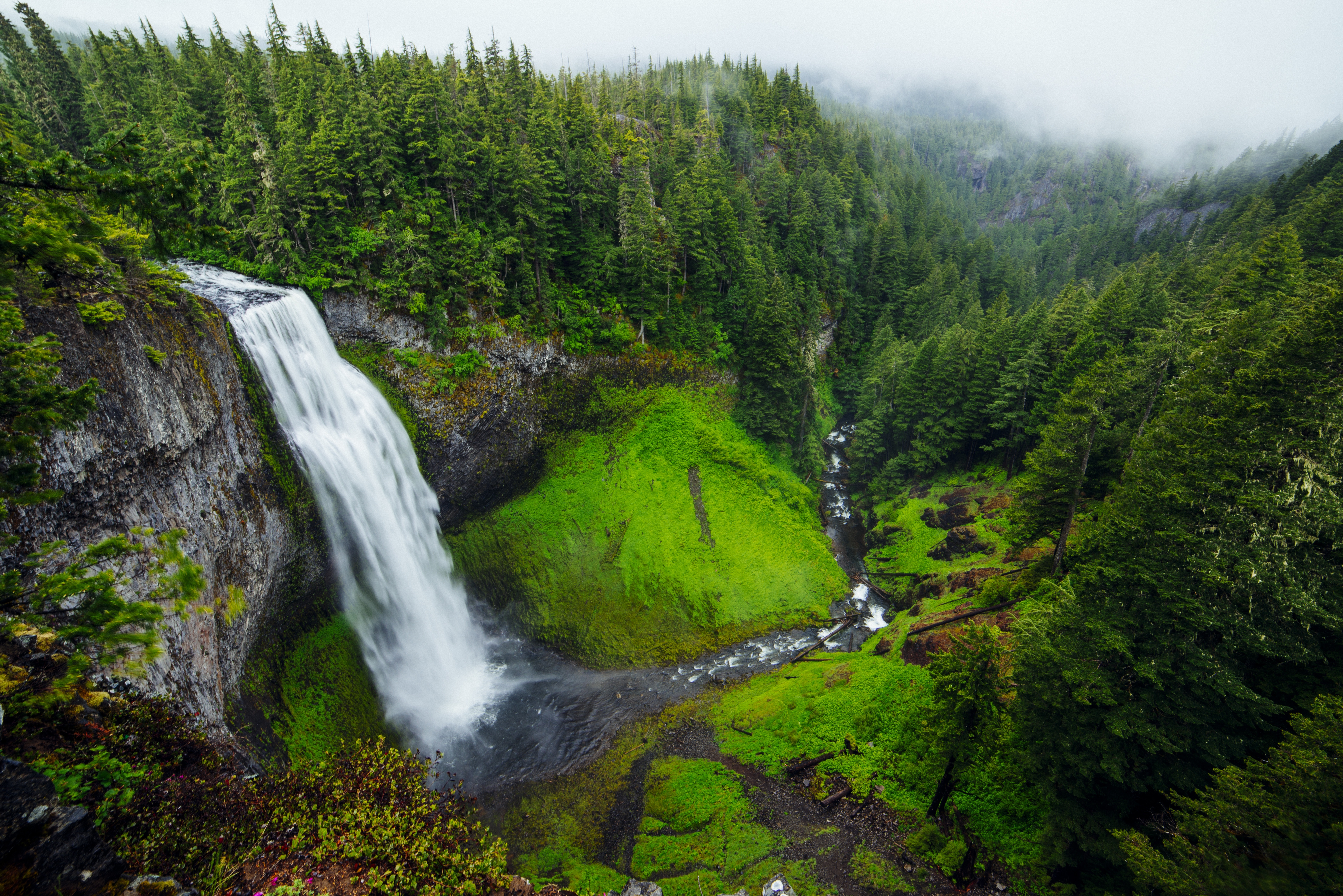 Cliff Fog Forest Moss Nature Stream Waterfall 6945x4635