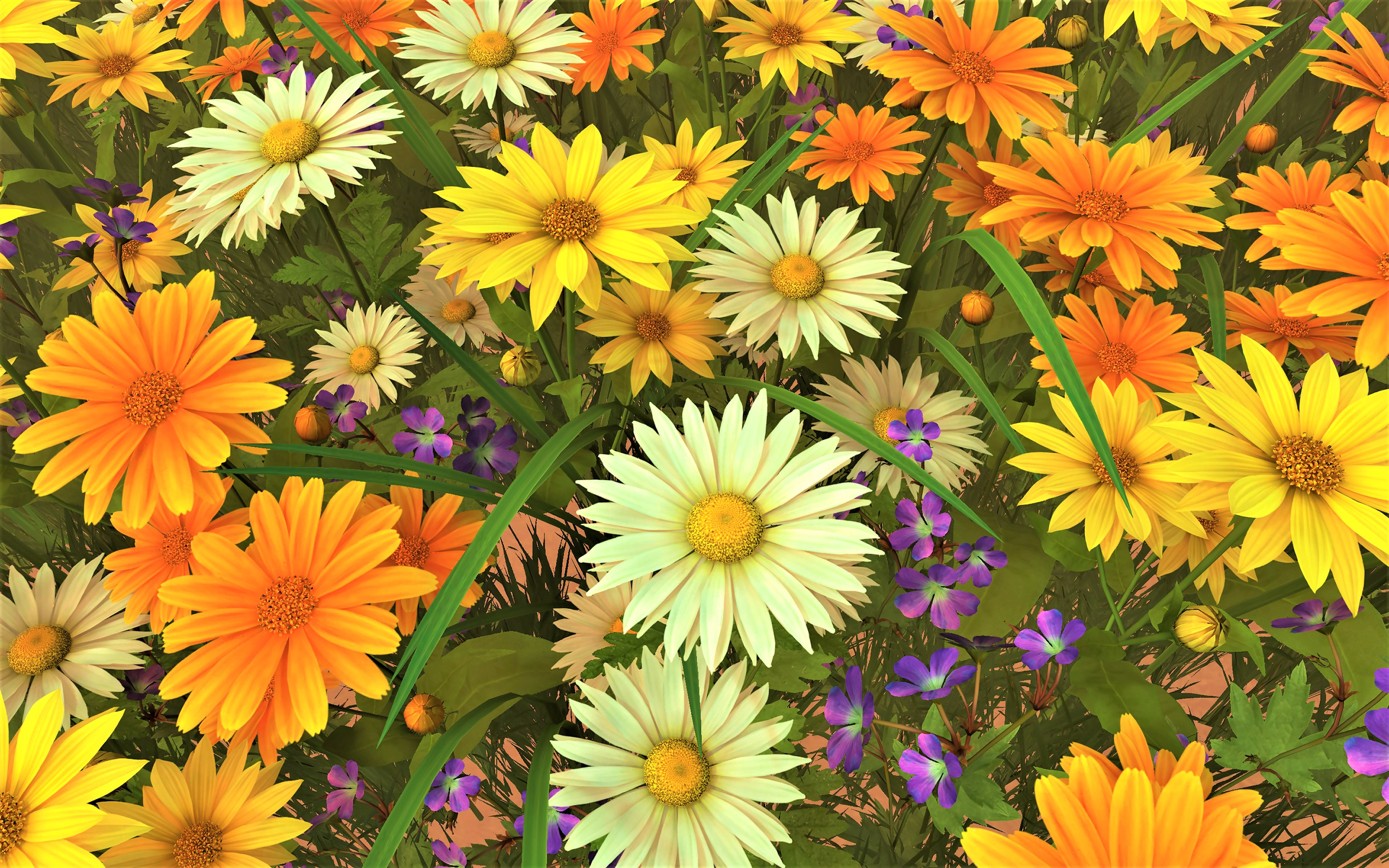 Daisy Flower Gerbera White Flower Yellow Flower 3840x2400