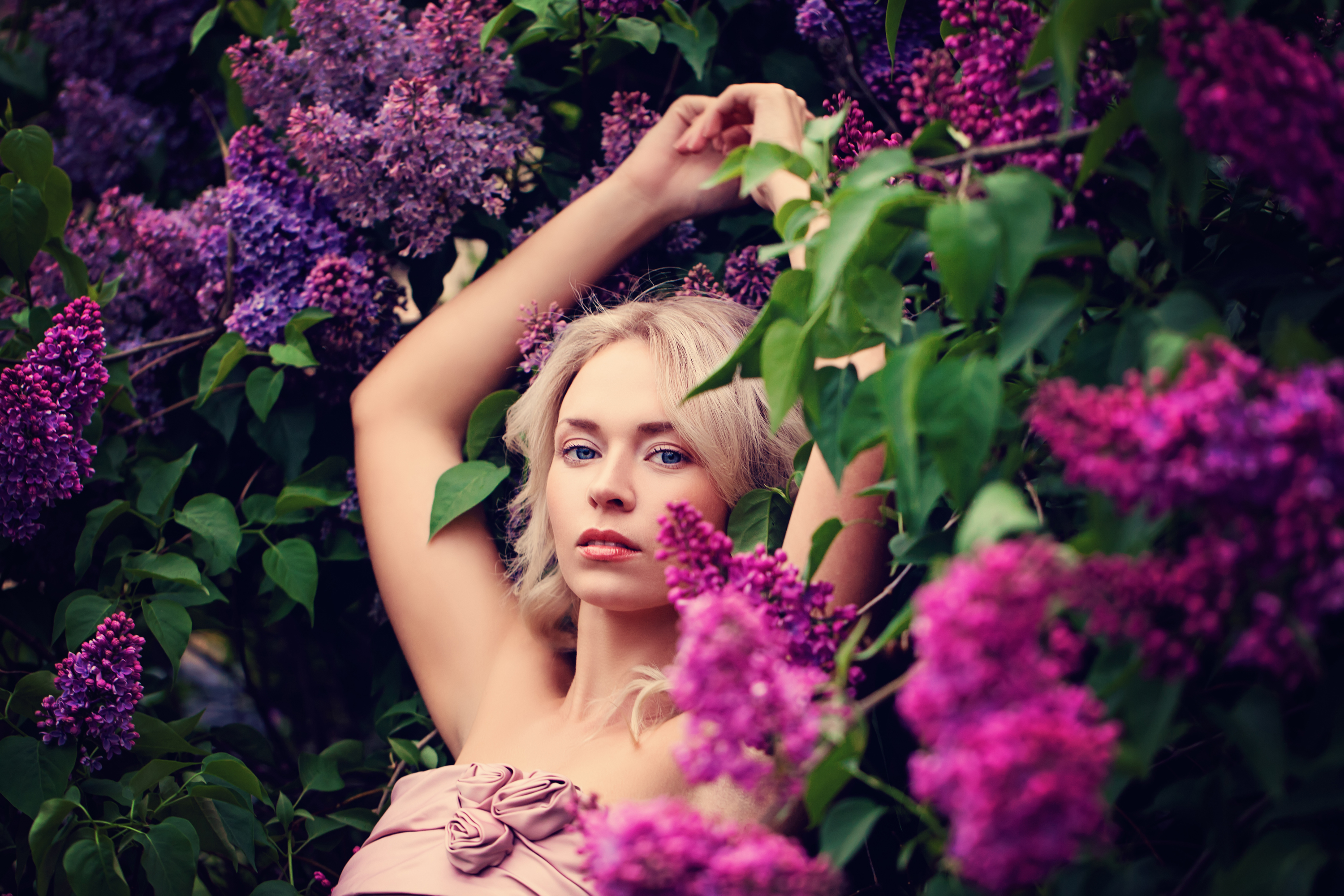 Blonde Blue Eyes Girl Lilac Model Pink Flower Woman 3000x2000