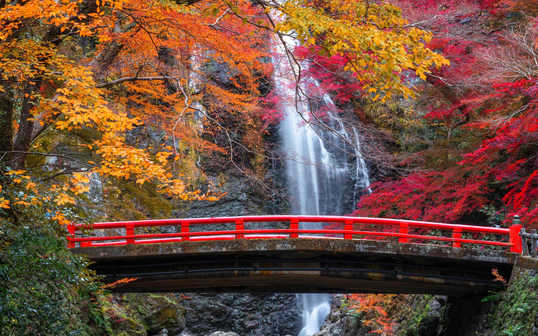 Bridge Fall Waterfall 2880x1800