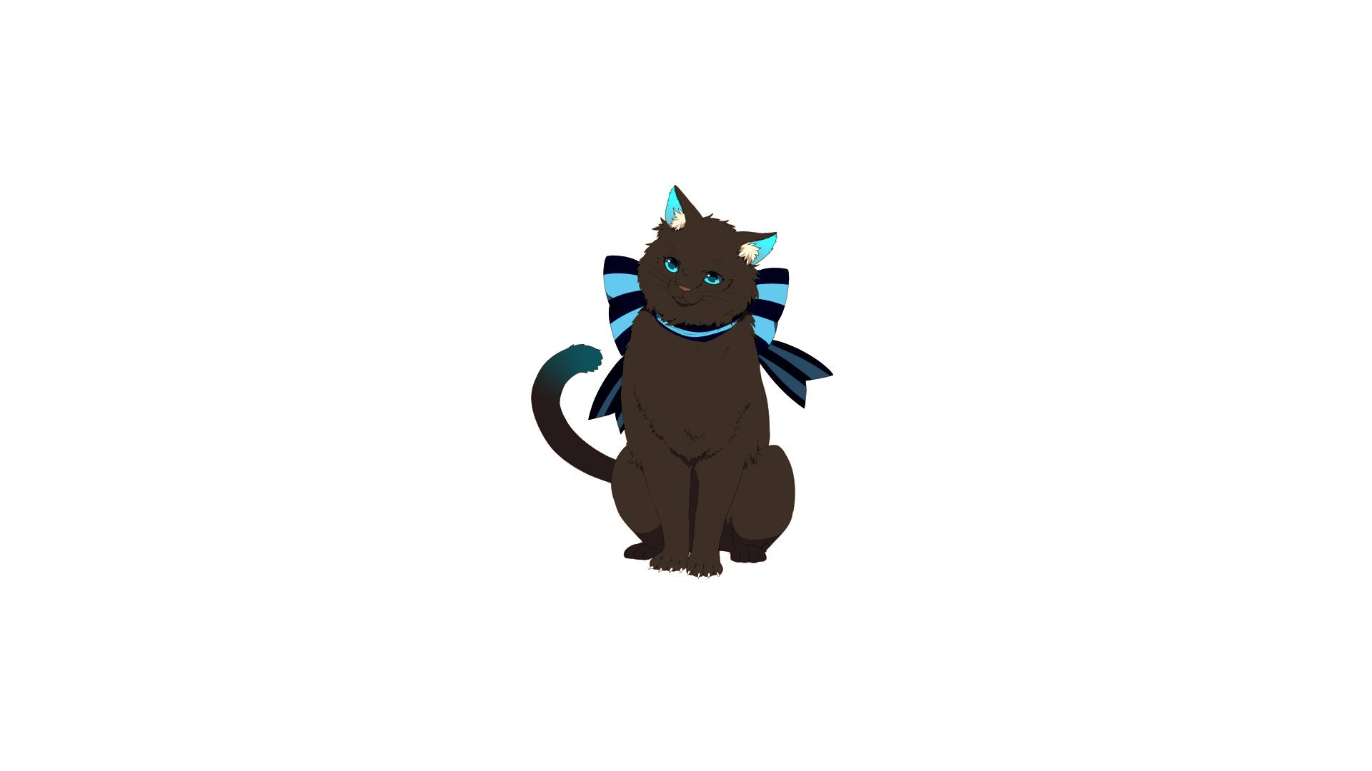 Cat 1920x1080
