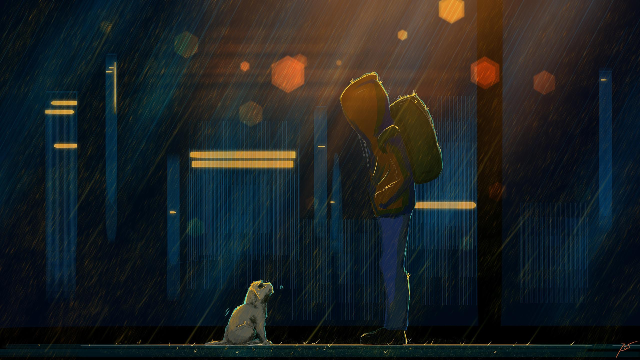 Backpack Dog Rain 2560x1440