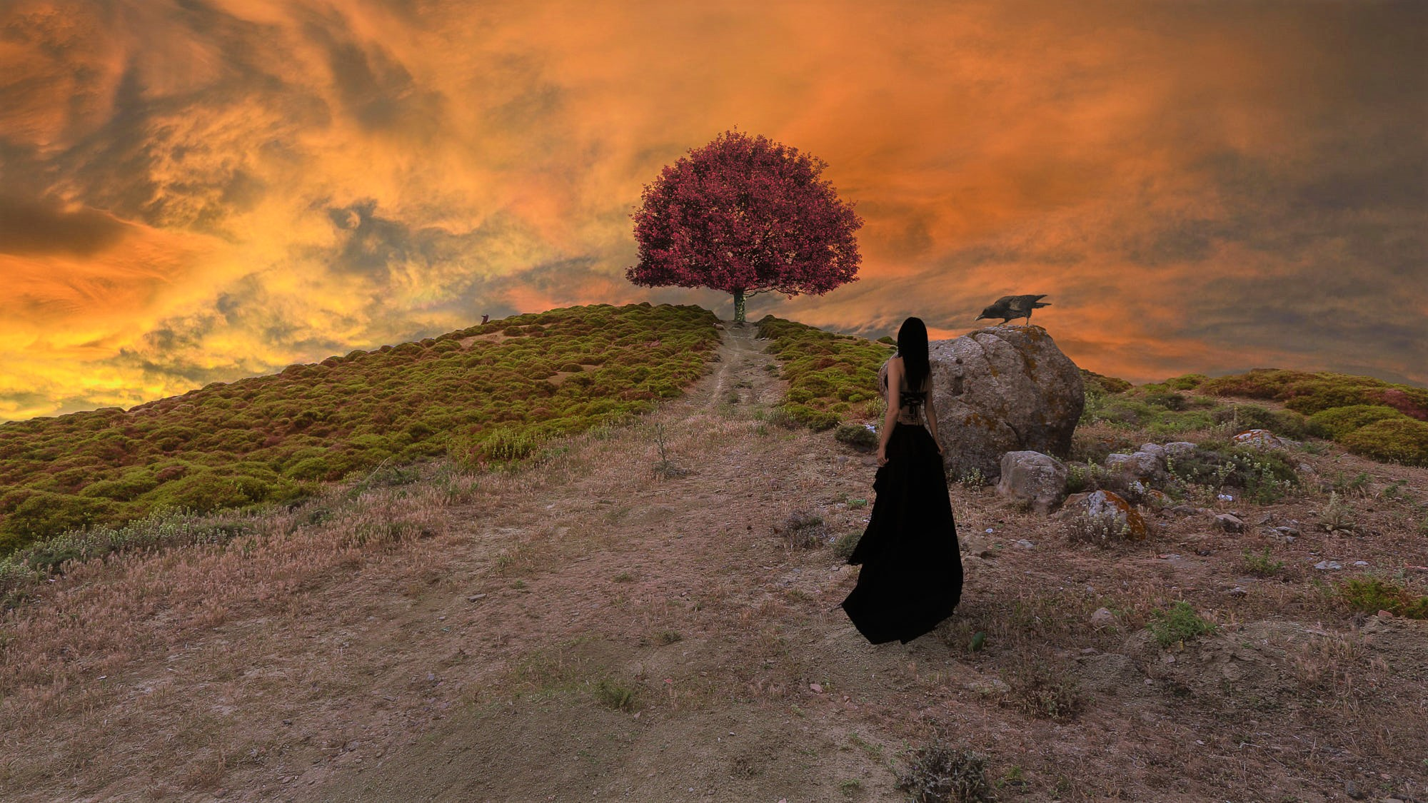 Artistic Girl Gothic Hill Raven Sky Sunset Tree Woman 2000x1125