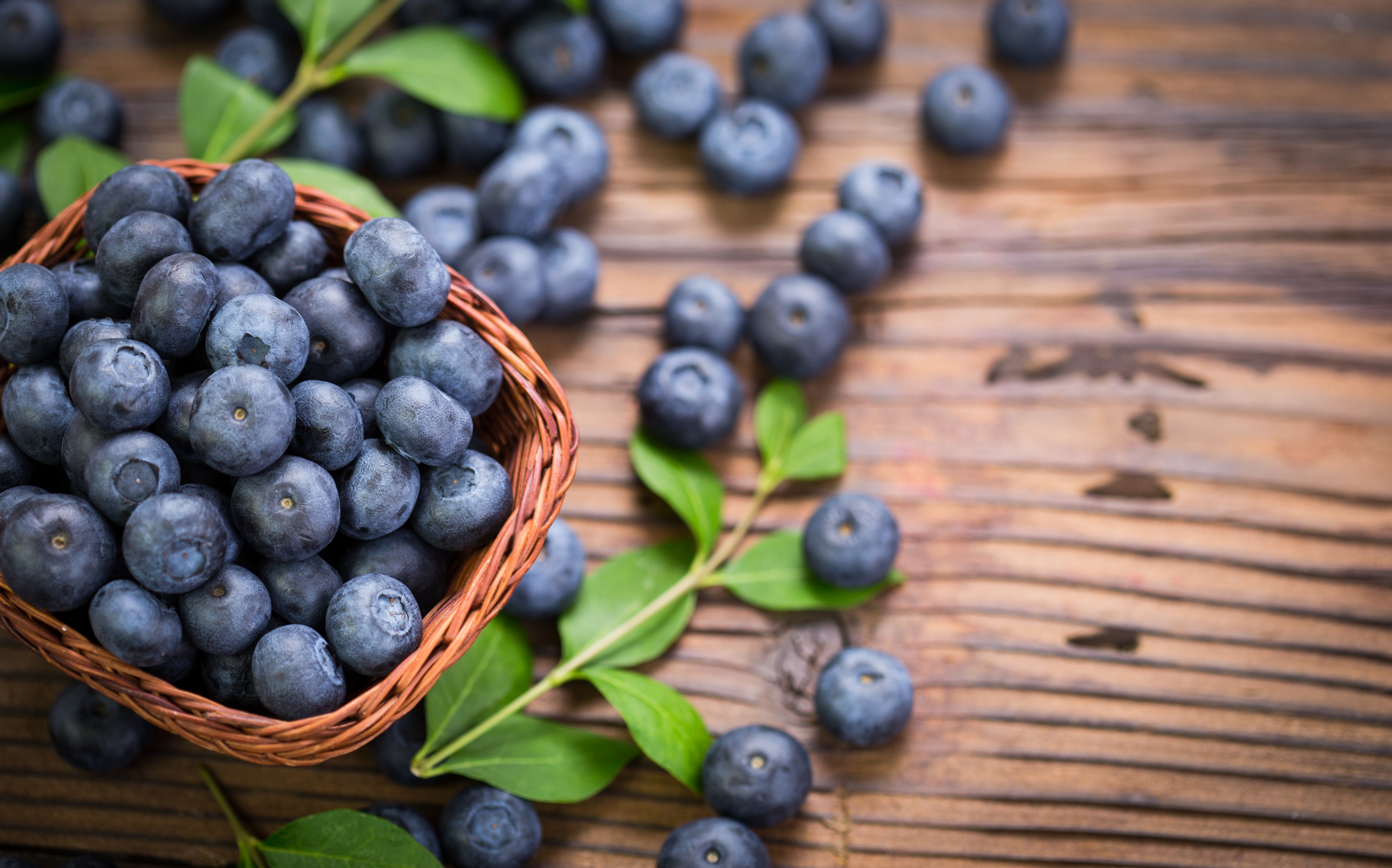 Berry Blueberry Fruit 5231x3262
