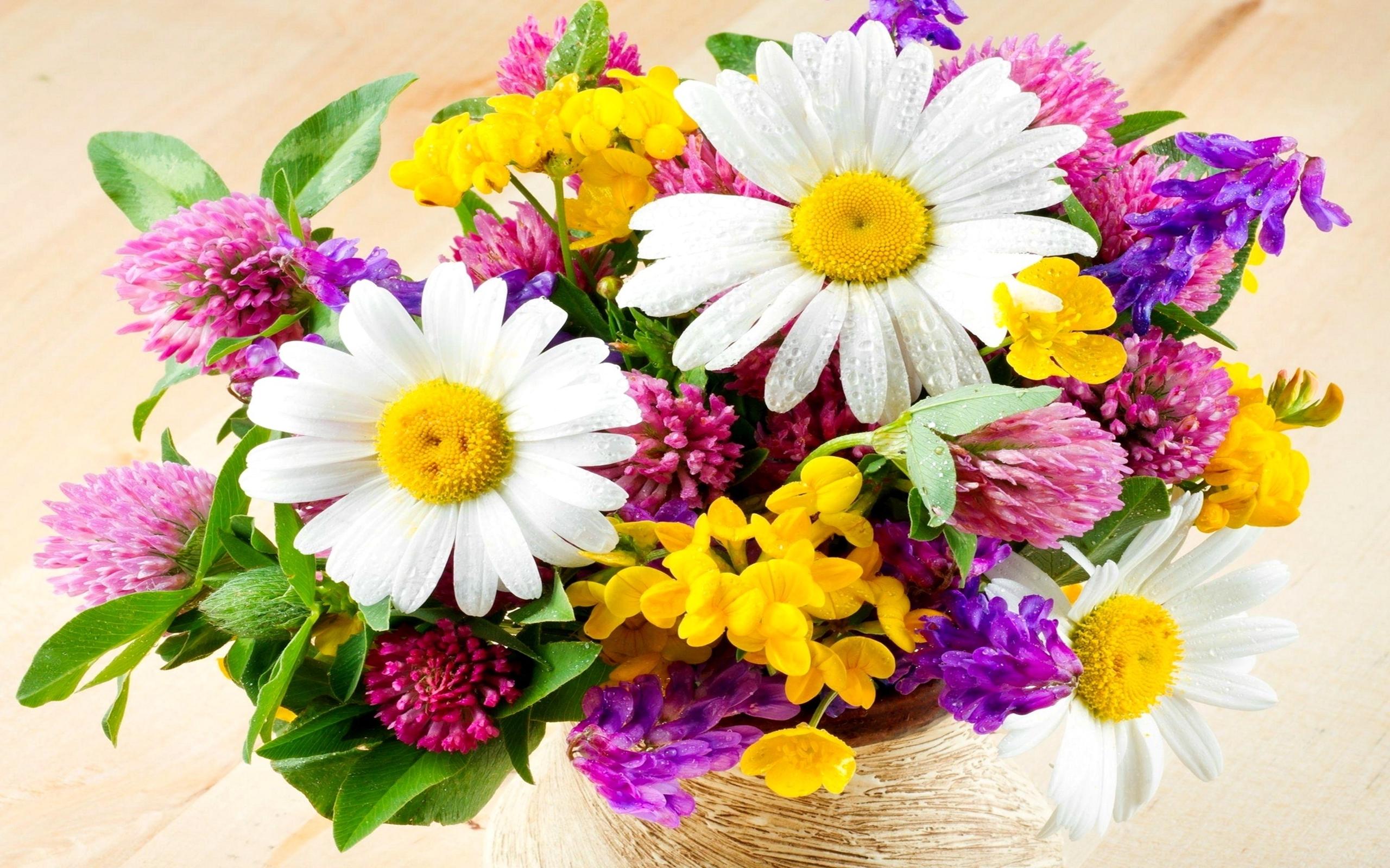 Bouquet Colorful Flower 2560x1600