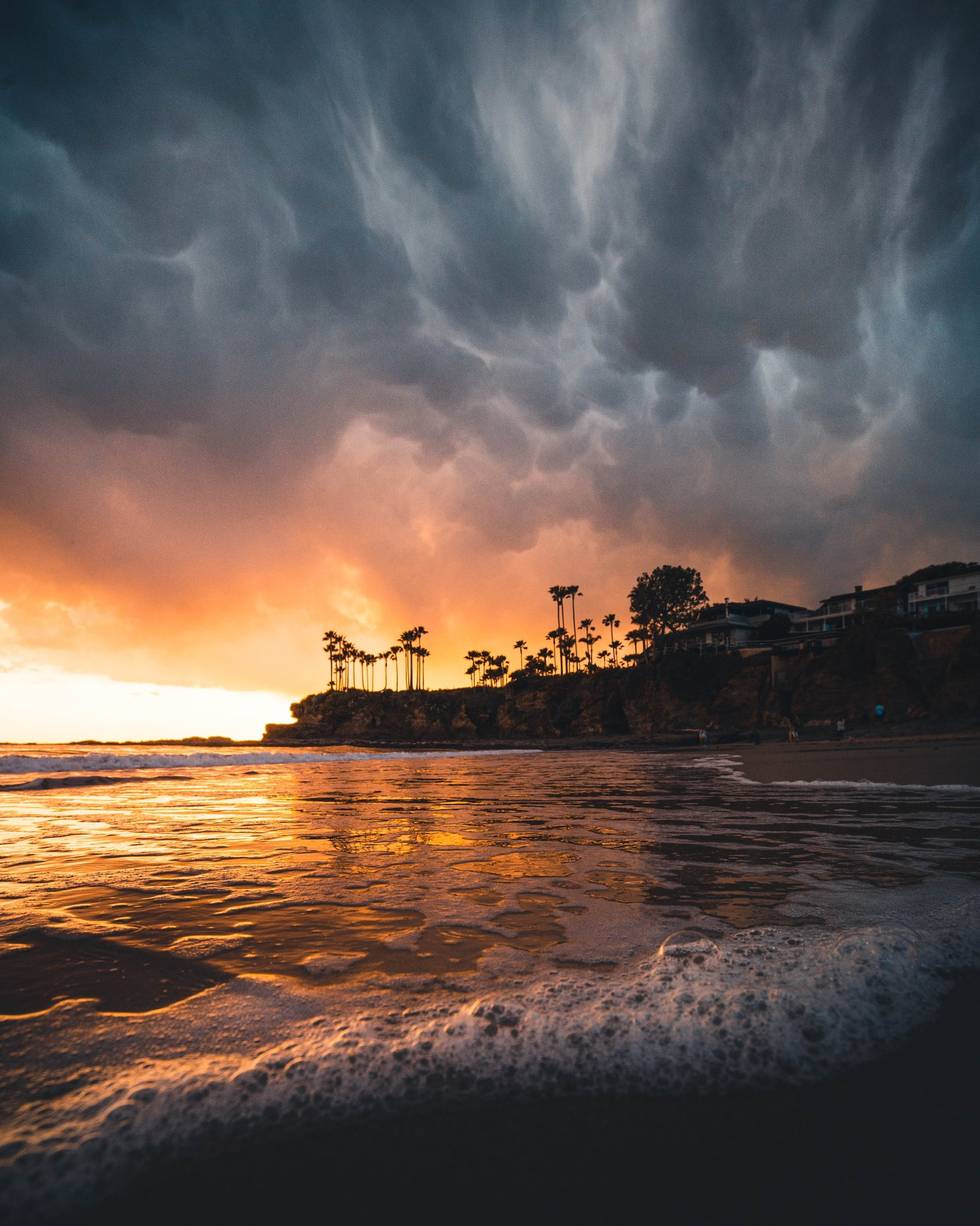 Sunset Landscape Palm Trees Beach Waves Sea Foam 1638x2048