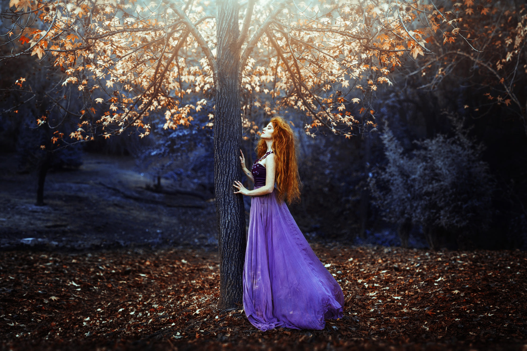 Girl Model Mood Purple Dress Redhead Tree Woman 2000x1333