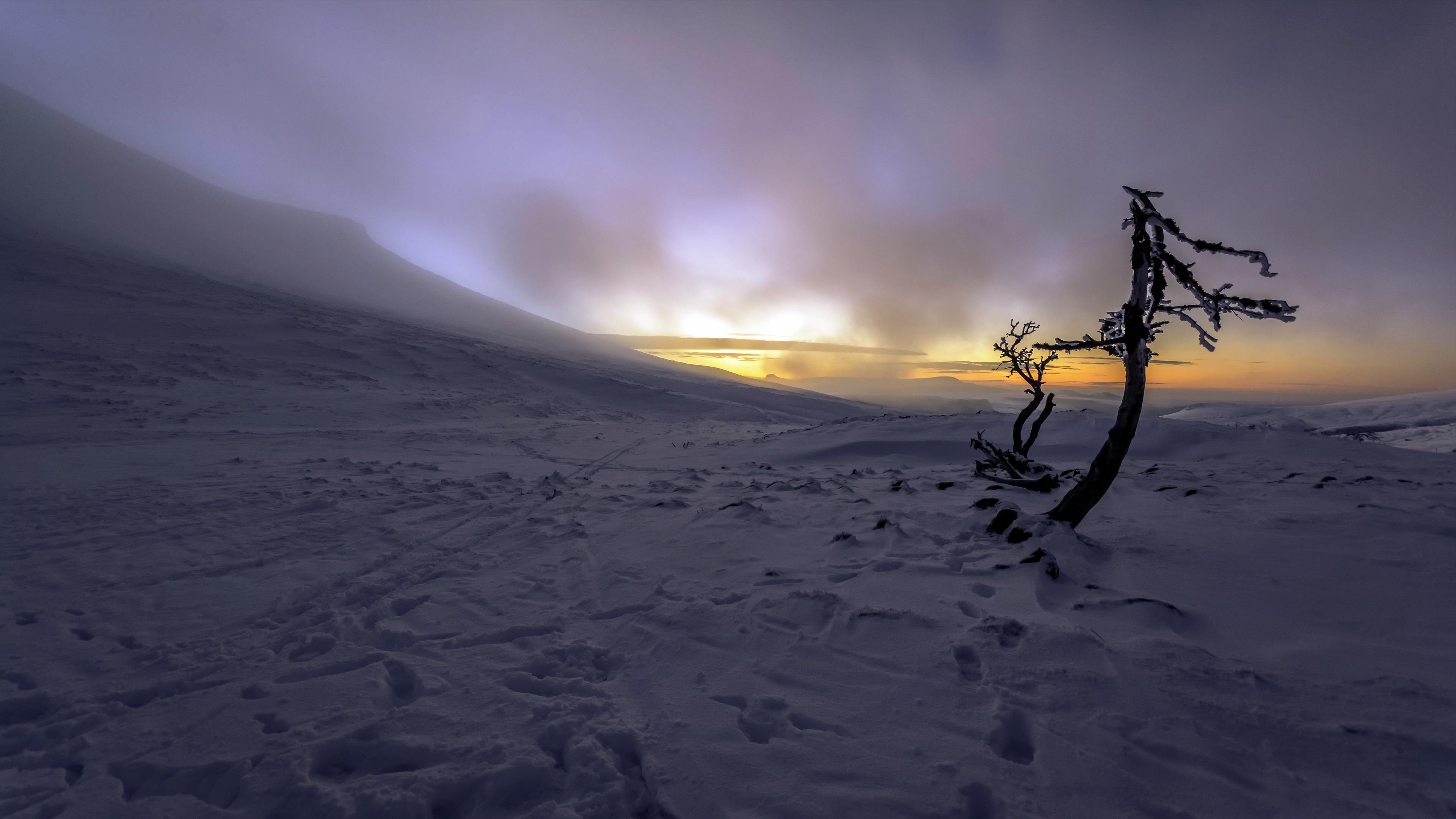 Nature Winter Dark Sunlight Cold Snow Ice Outdoors 3840x2160
