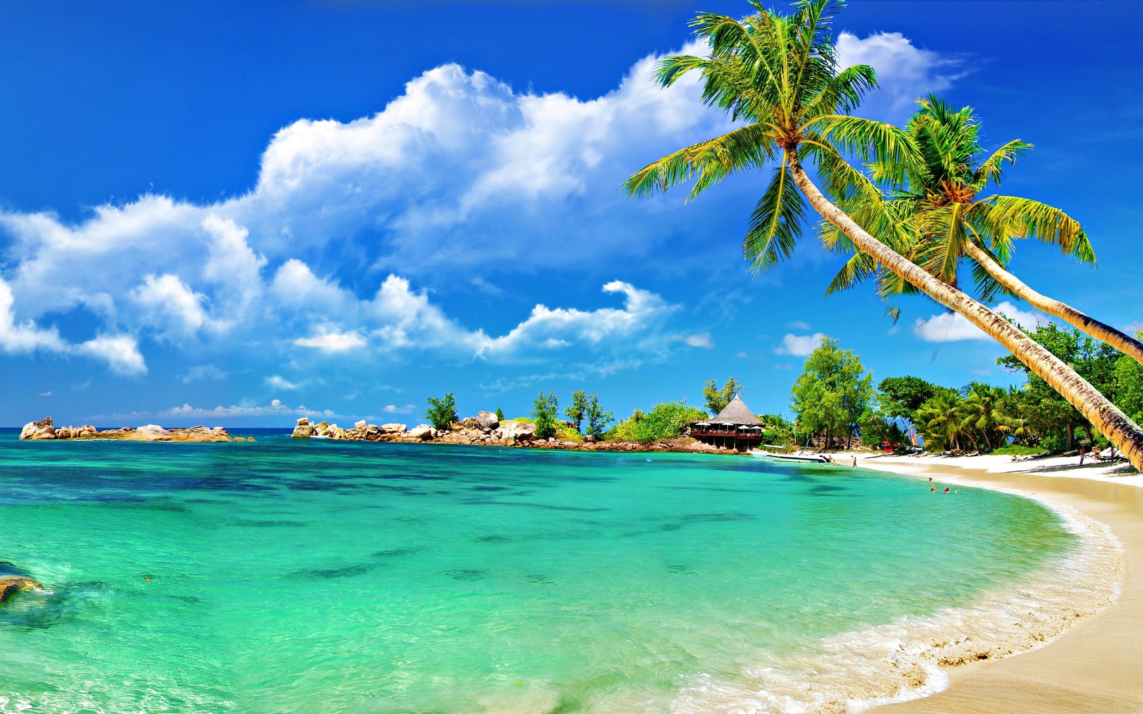 Island Tropical Beach 3840x2400