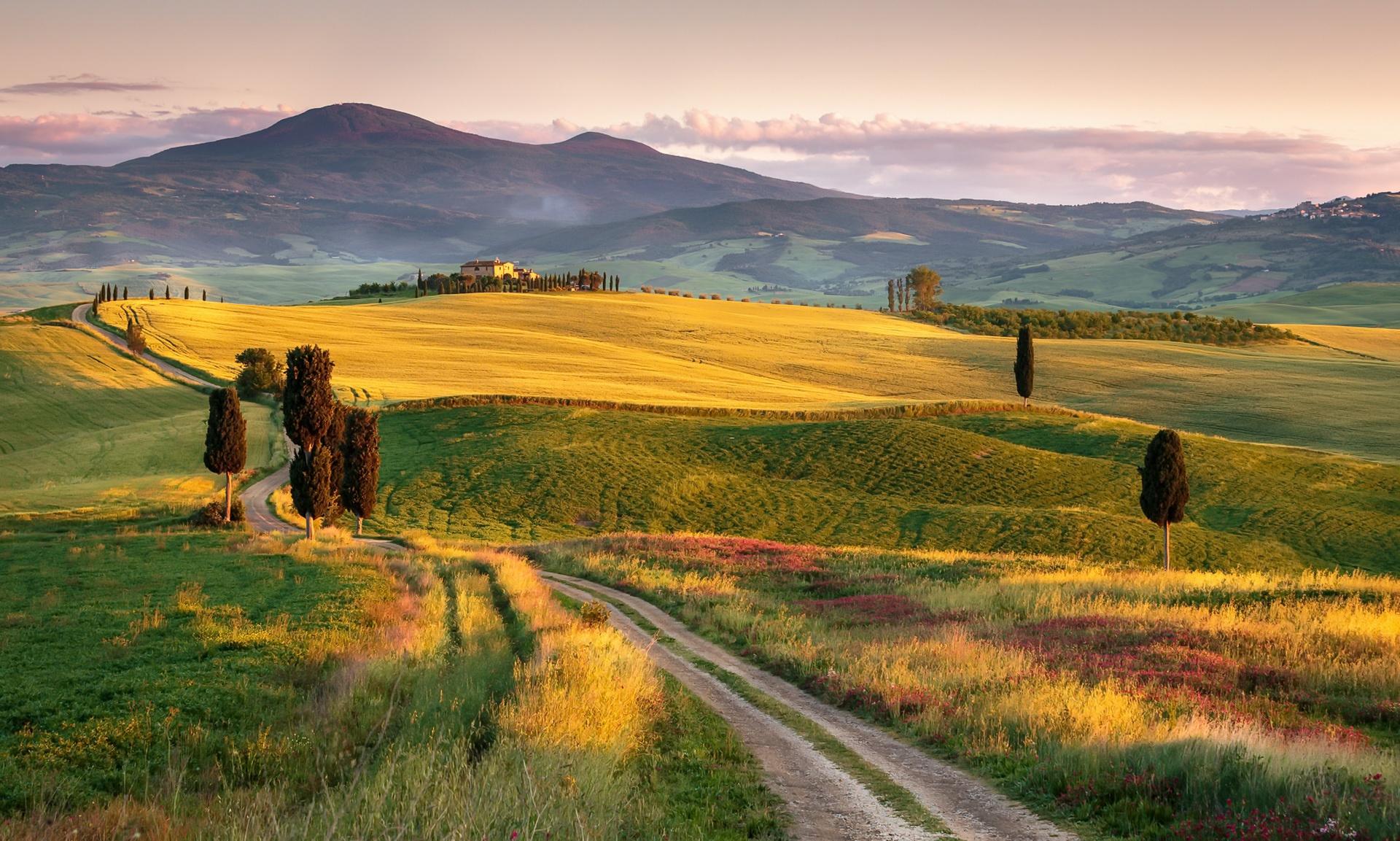 Field Hill Italy Landscape Nature Tuscany 1920x1153
