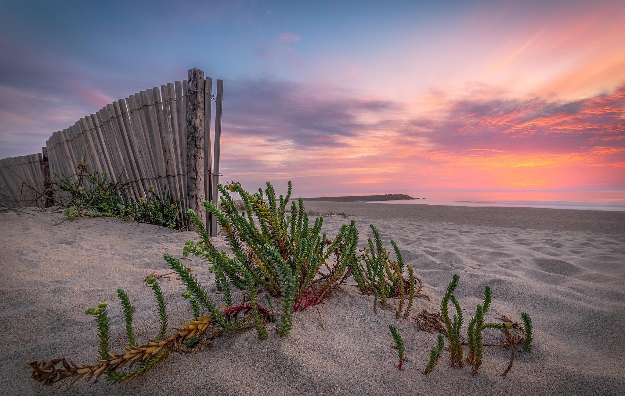 Beach Horizon Sand Sunset 2048x1300