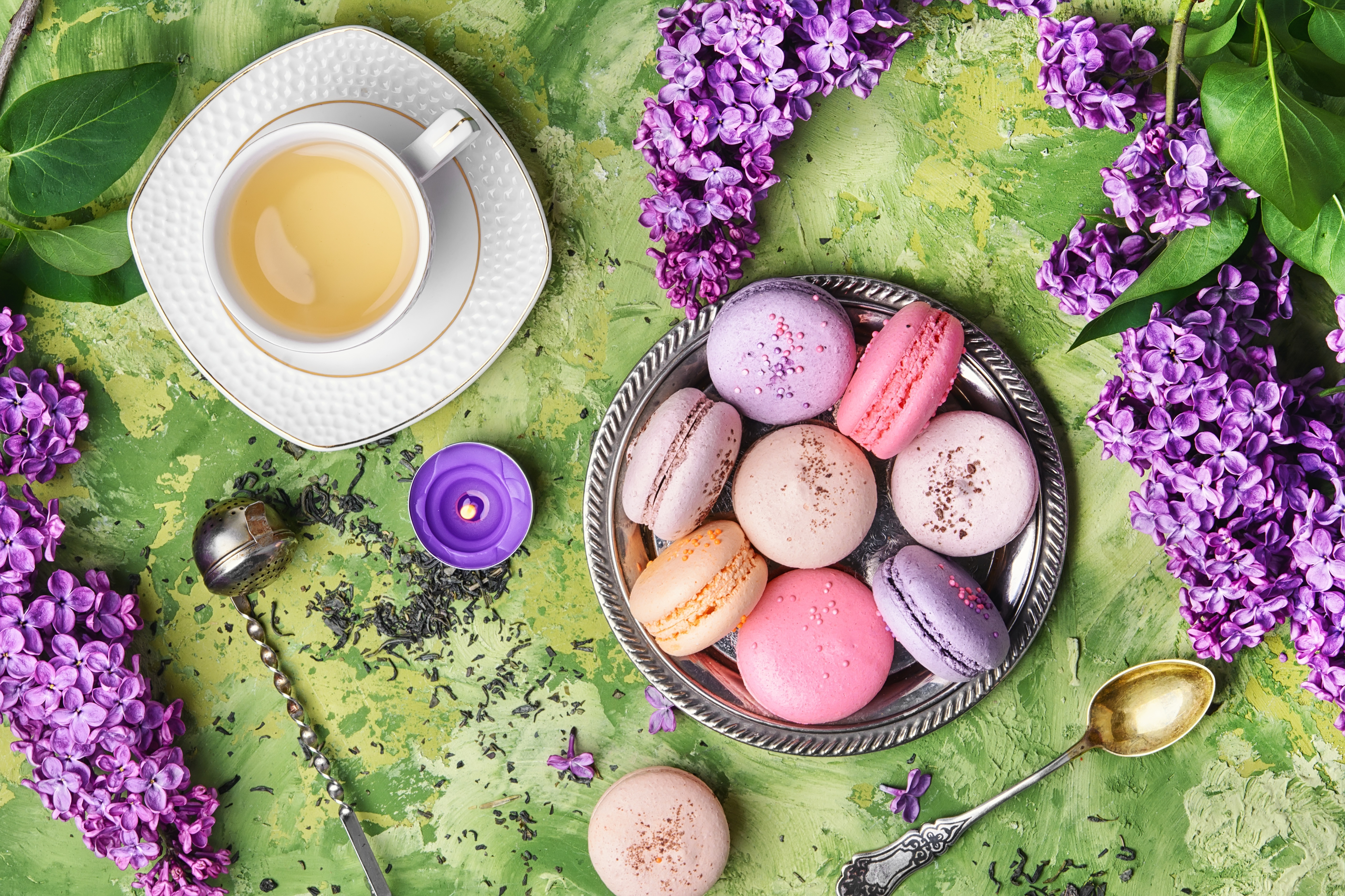 Cup Flower Lilac Macaron Still Life Tea 5600x3733