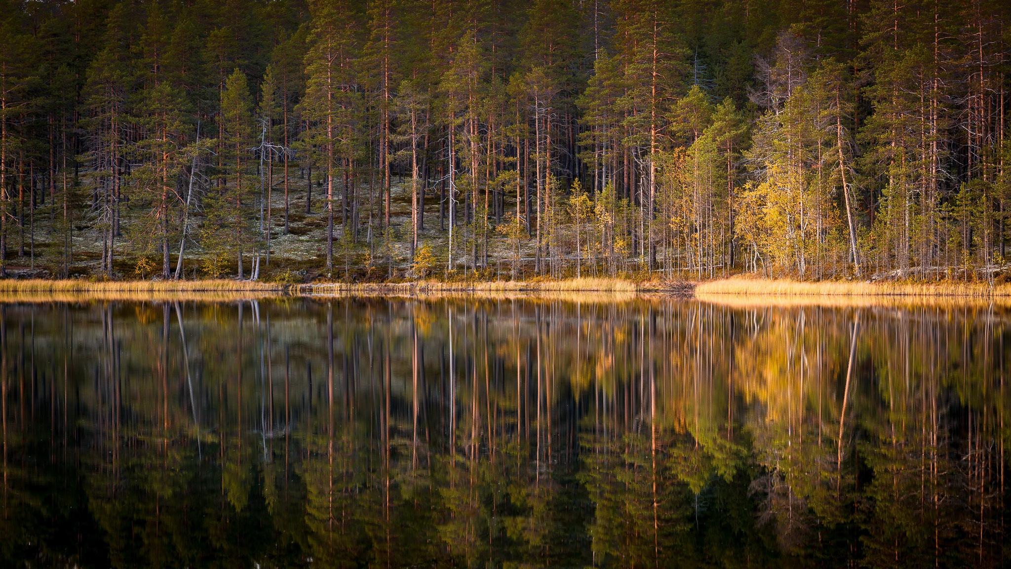 Lake Nature Reflection 2048x1152