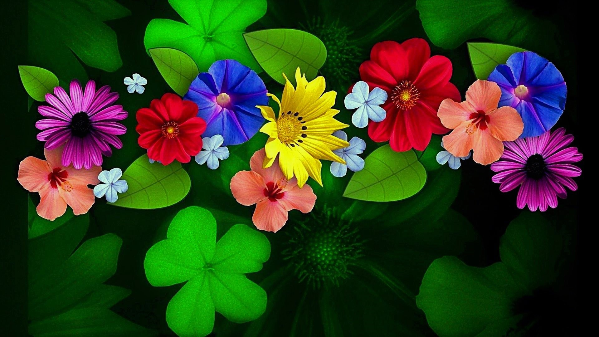 Abstract Clover Colorful Colors Flower 1920x1080