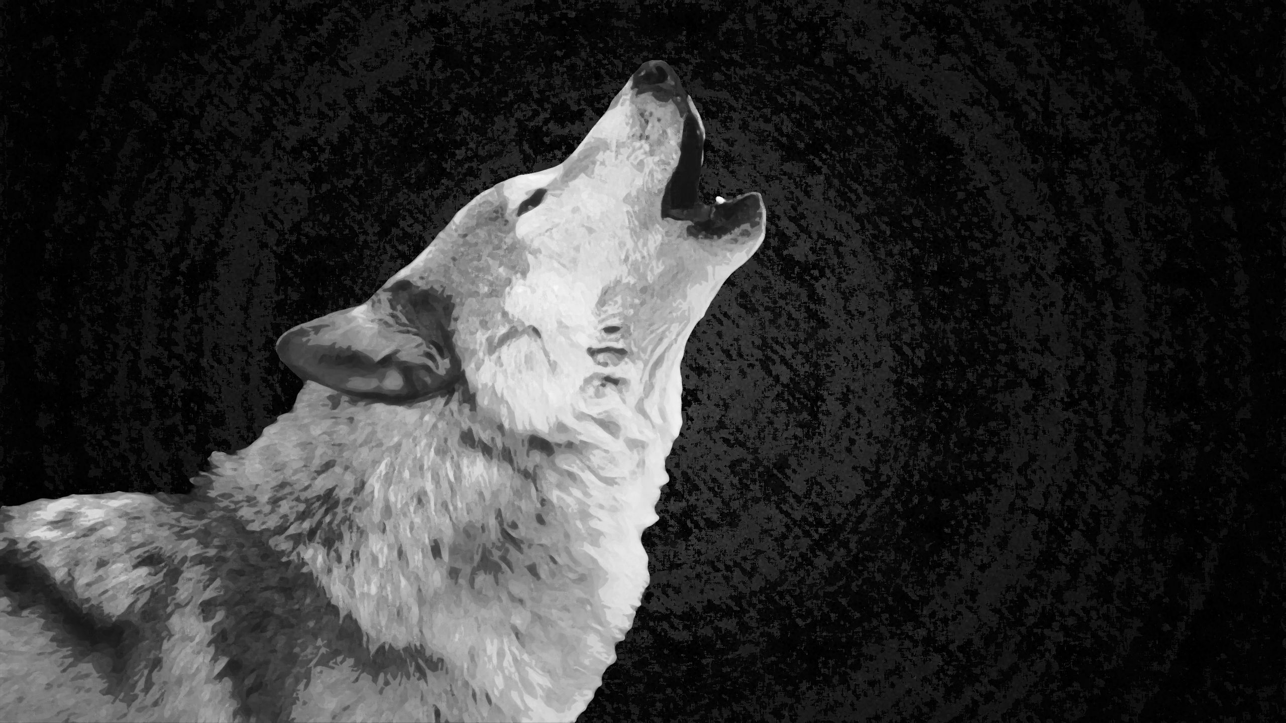 Wolf 2560x1440