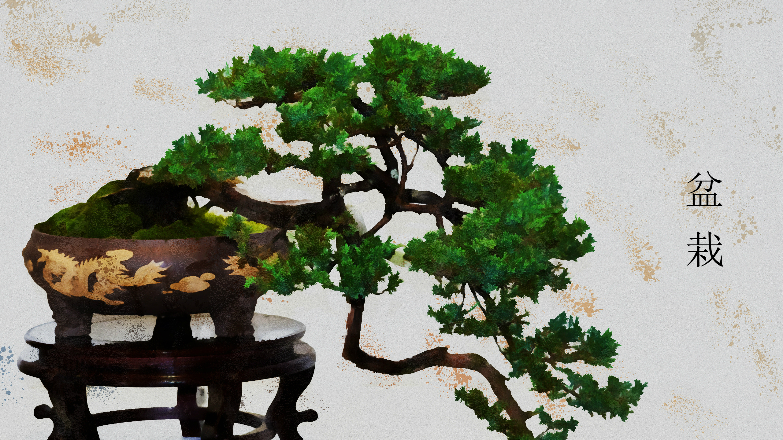 Artistic Bonsai Kanji Plant Pot Plant Tree 2560x1440