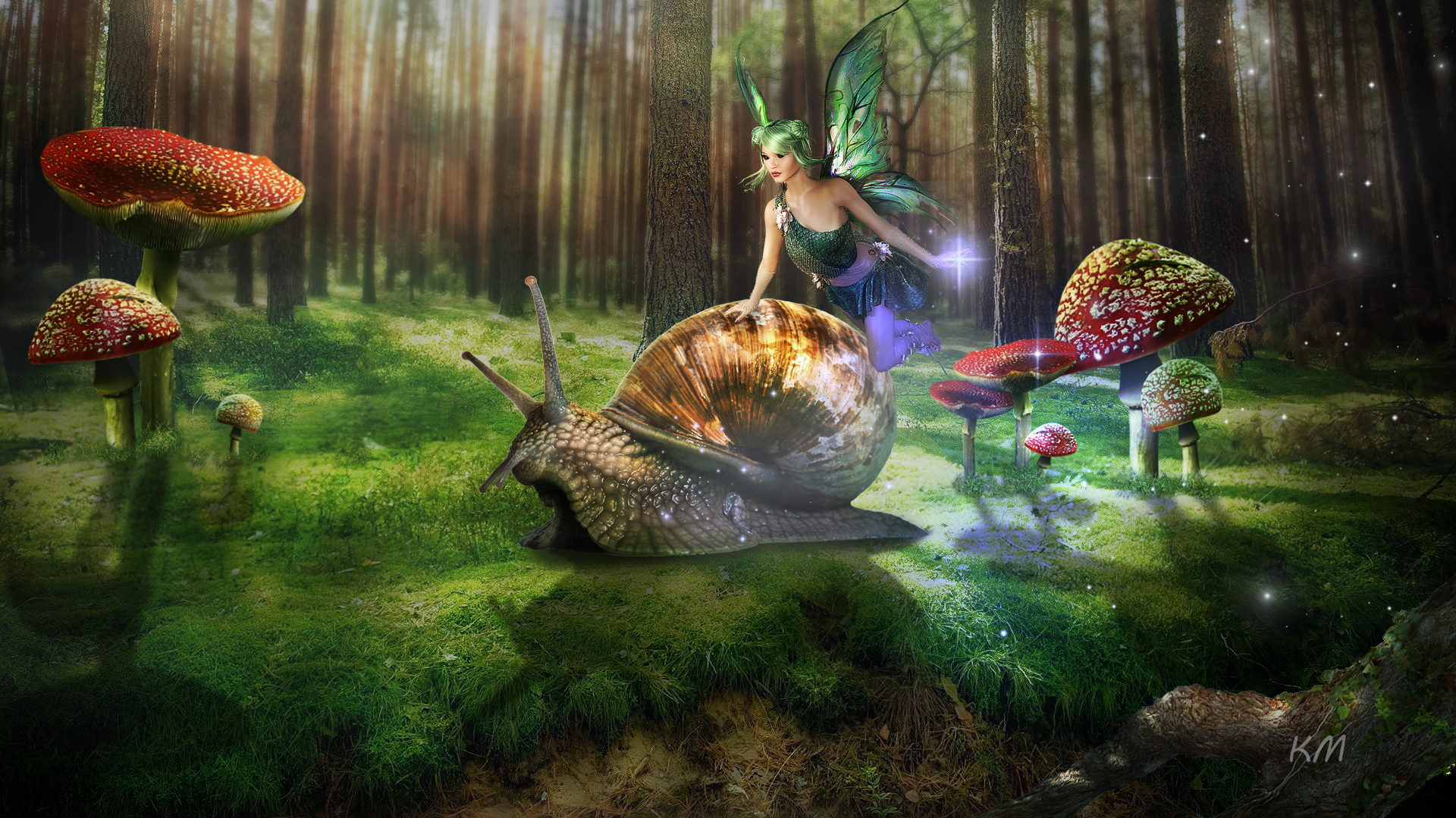 Fairy Mushroom Snail 1920x1080