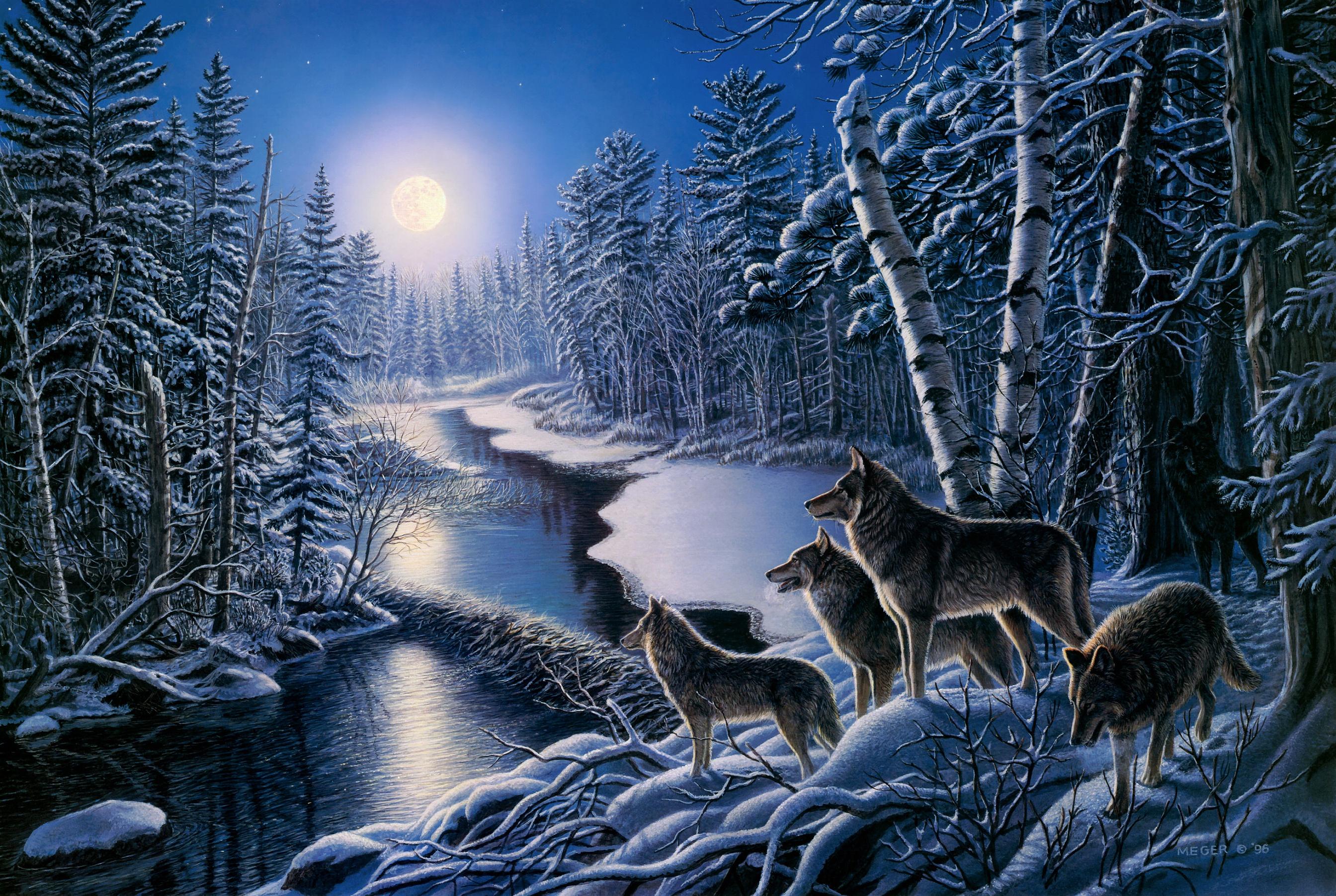 Artistic Snow Wildlife Winter Wolf Predator Animal 2688x1803