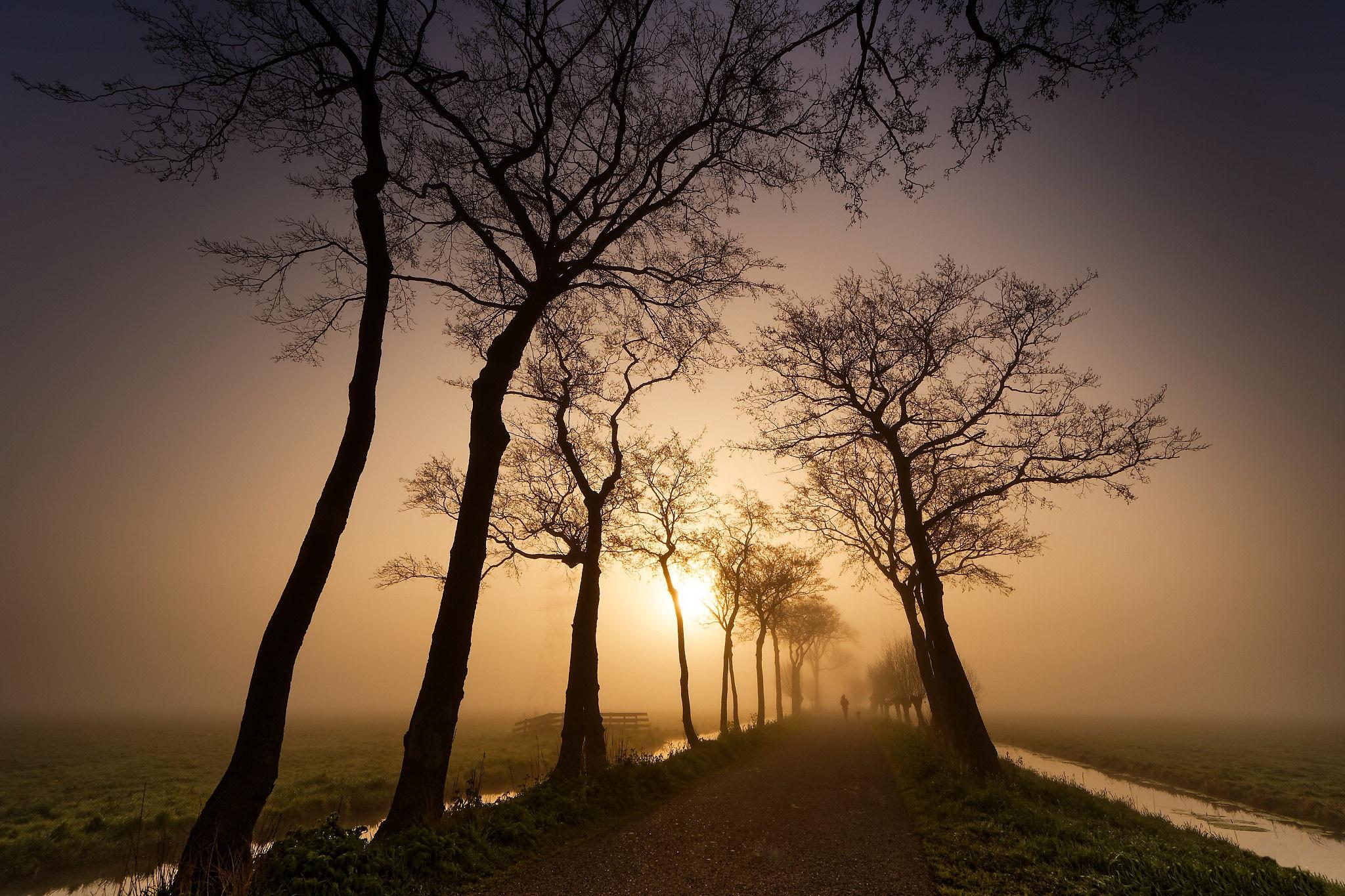 Nature Road Sunset 2048x1365