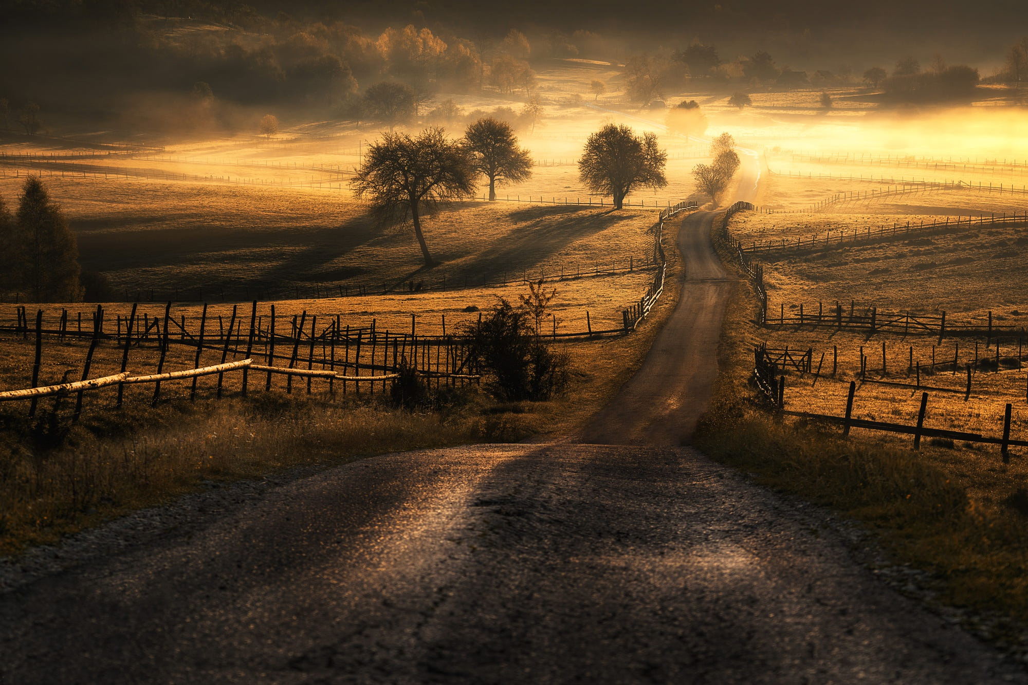 Fog Landscape Nature Road 2000x1333