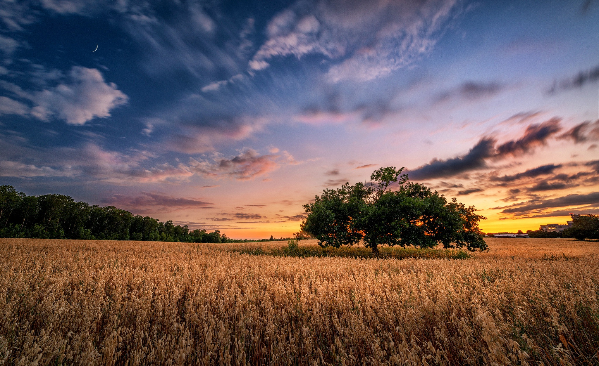 Nature Summer Field Sunset Sky 2048x1253