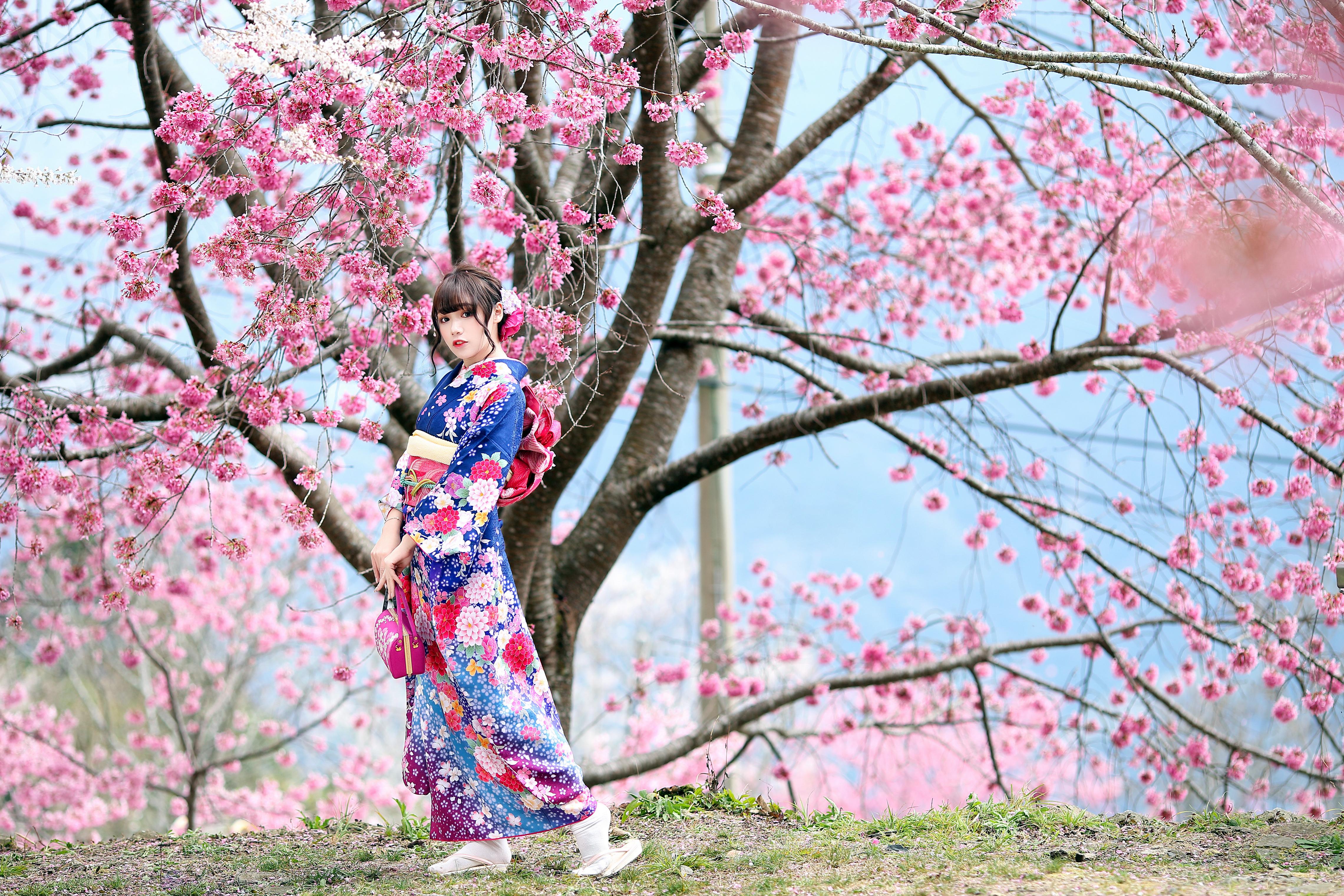 Woman Model Brunette Kimono Blossom 4562x3041