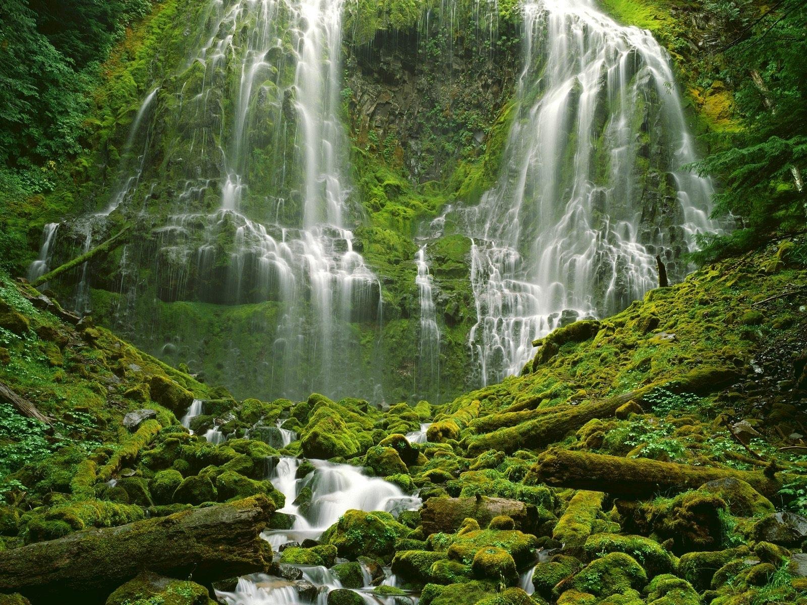 Moss Nature Vegetation Water Waterfall 1600x1200