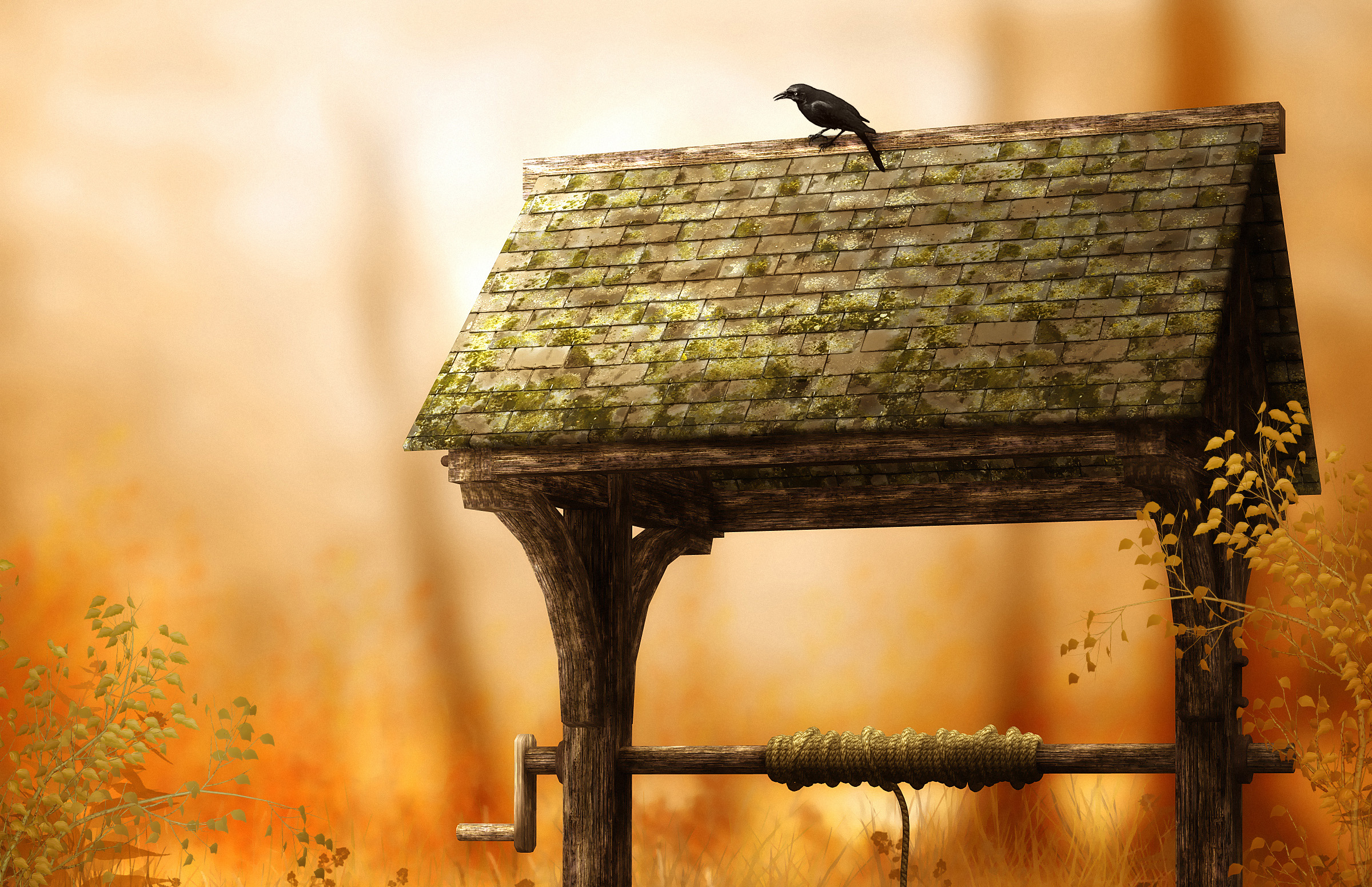 Well Bird Raven Artistic 2400x1552