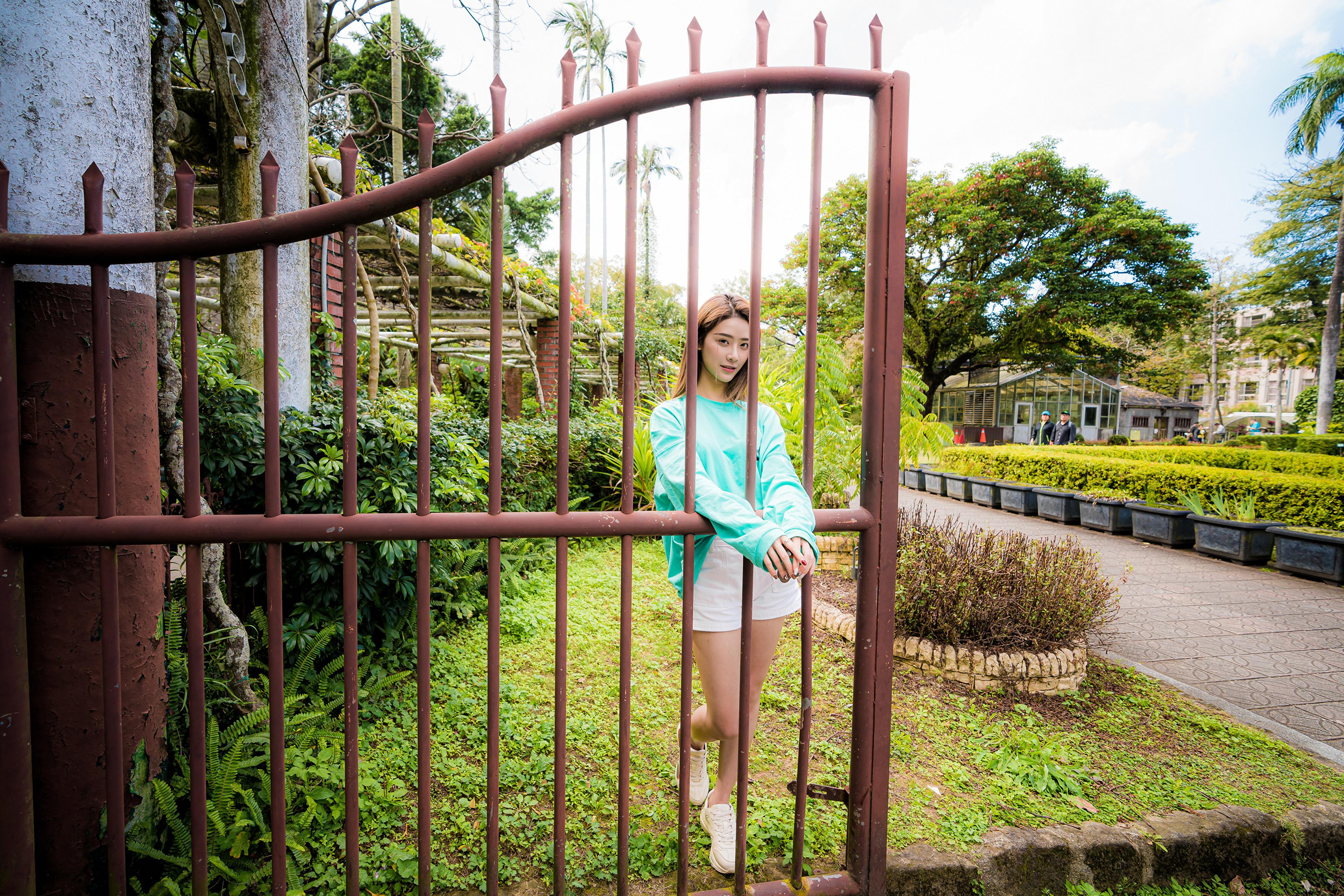 Asian Model Women Women Outdoors Long Hair Dark Hair Depth Of Field Bushes Trees Grass Shorts Sweate 3840x2561