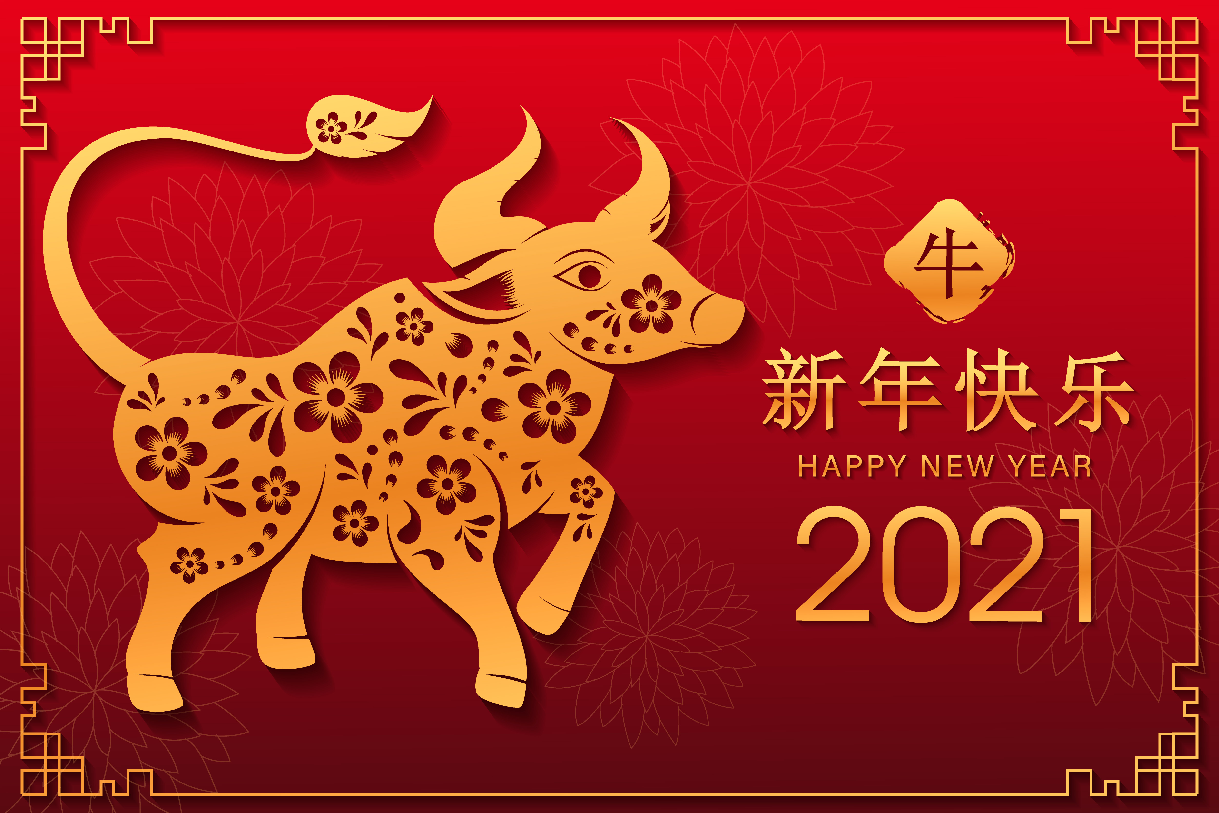 Holiday Chinese New Year 5000x3333
