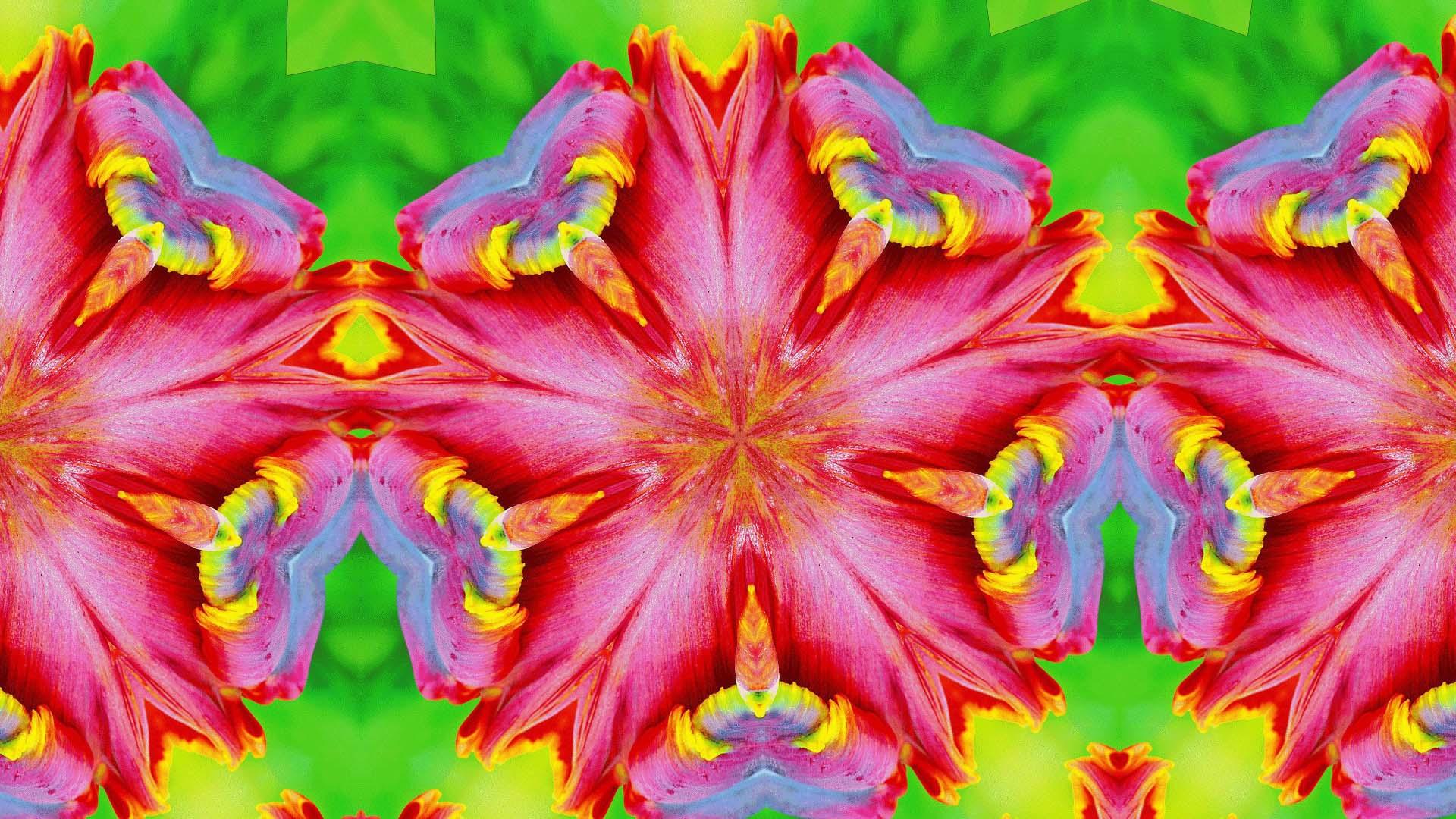 Artistic Digital Art Colors Pattern Pink Green 1920x1080
