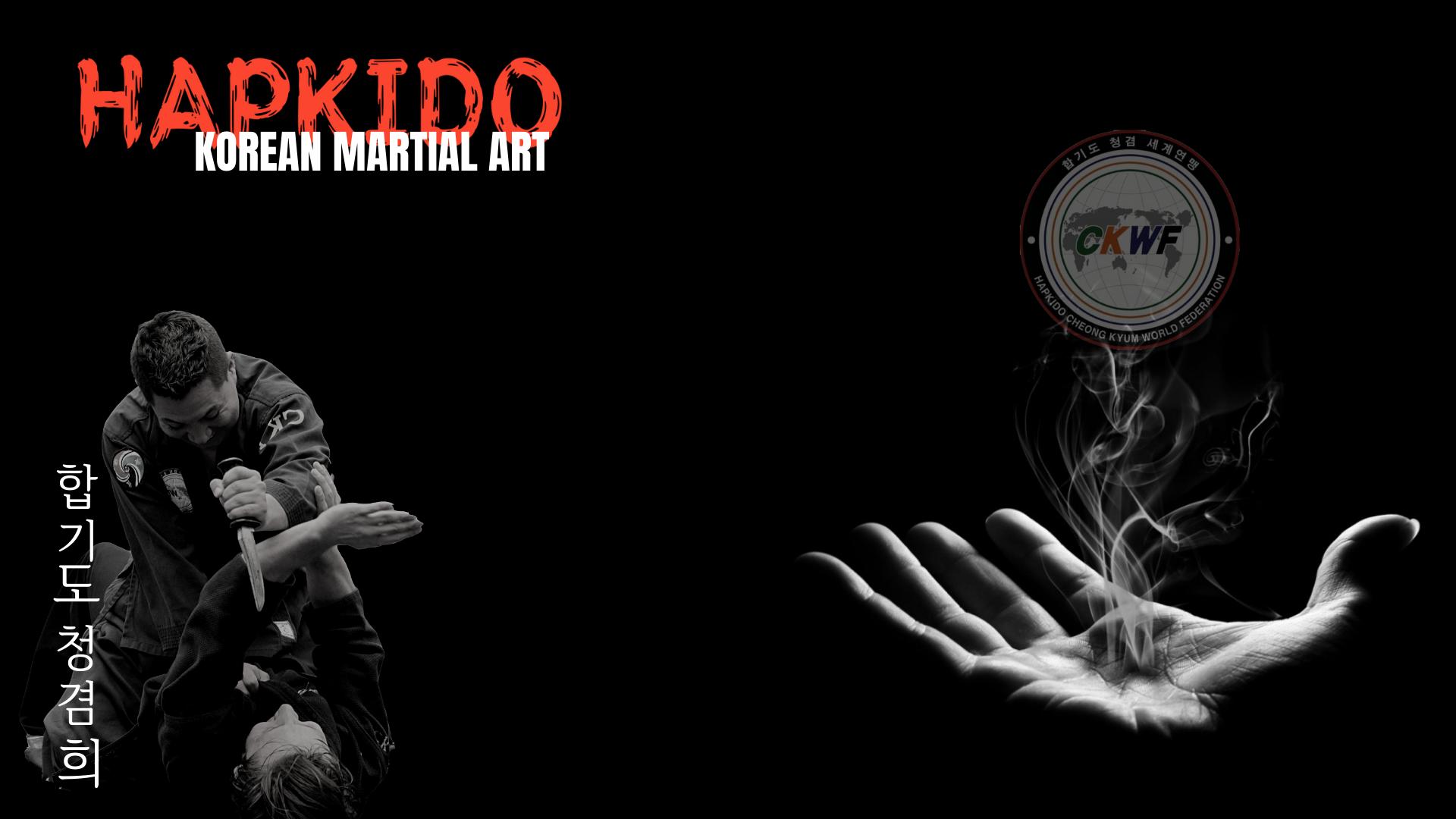Korean Korean Martial Arts Hapkido 1920x1080