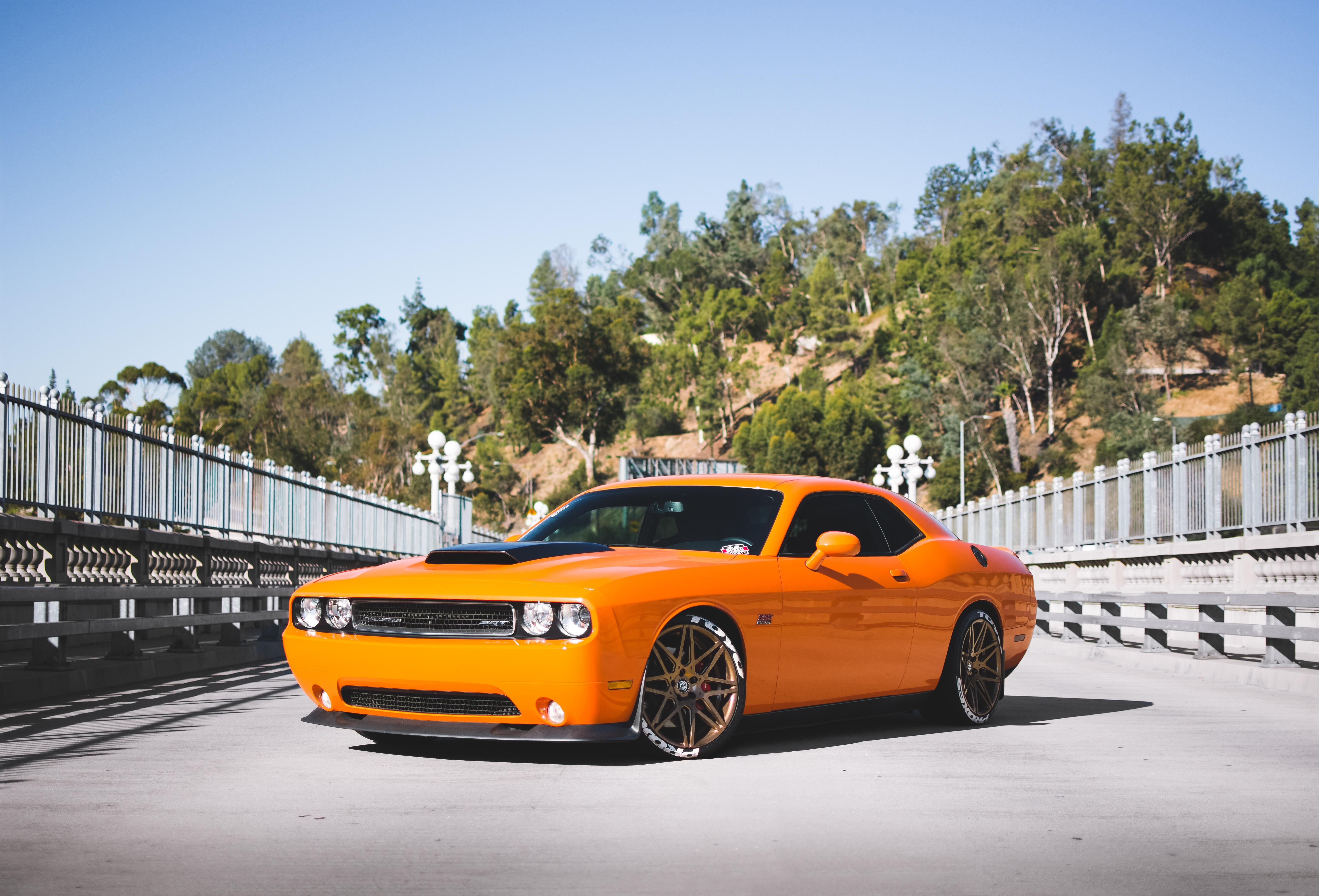 Dodge Challenger Dodge Car Orange Car Muscle Car 5959x4051