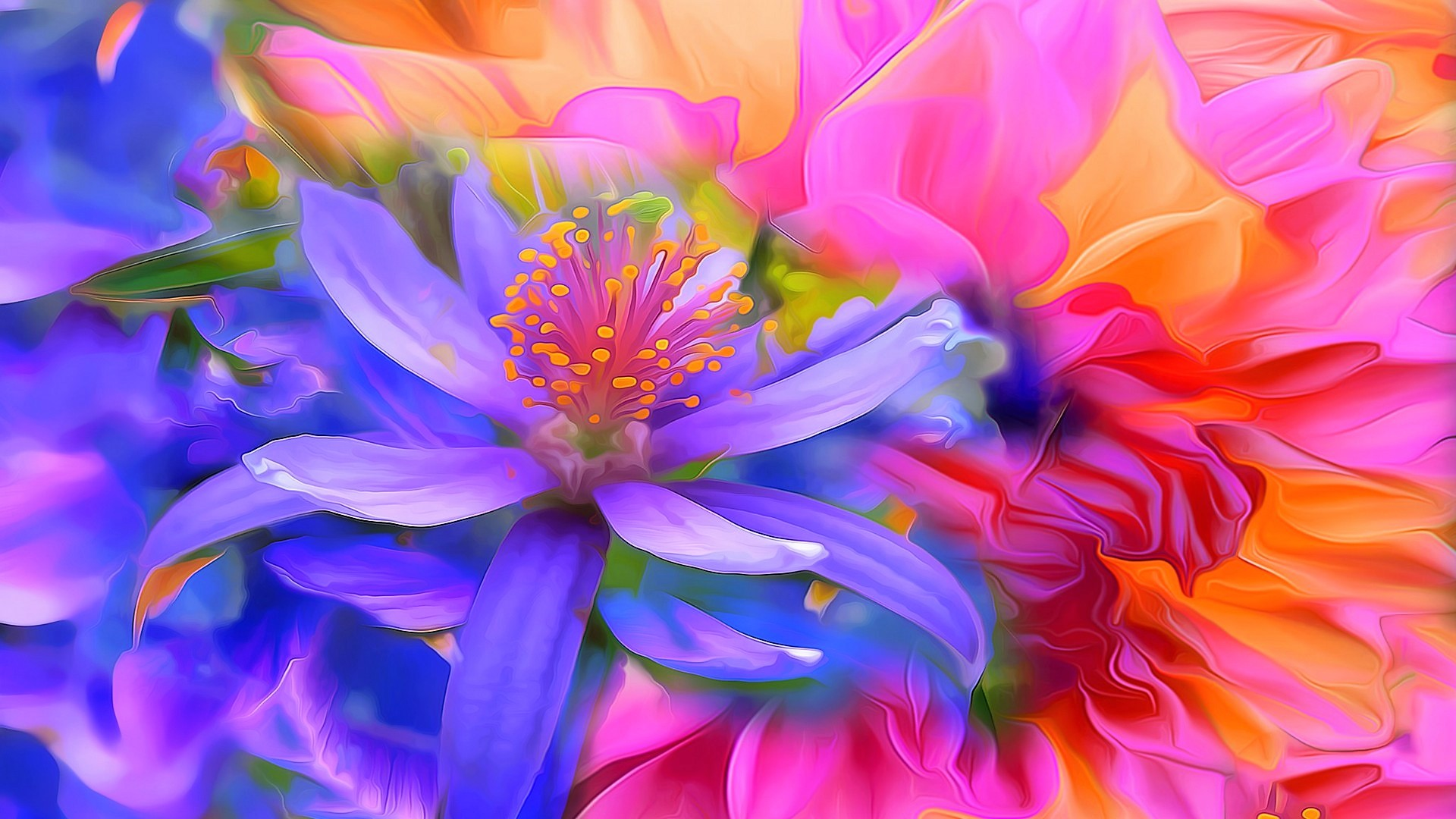 Abstract Flower Colors Colorful 1920x1080
