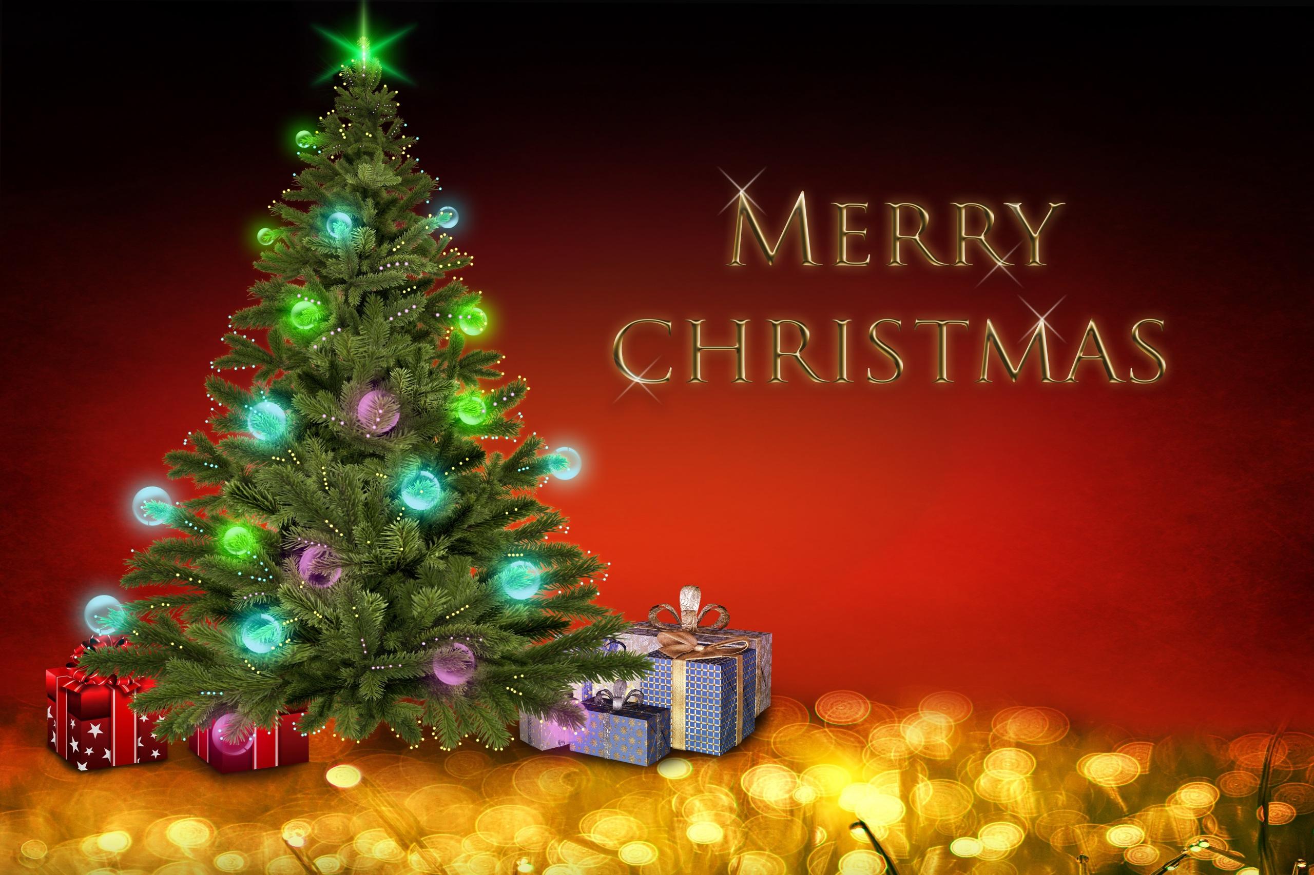 Merry Christmas Christmas Tree 2560x1706