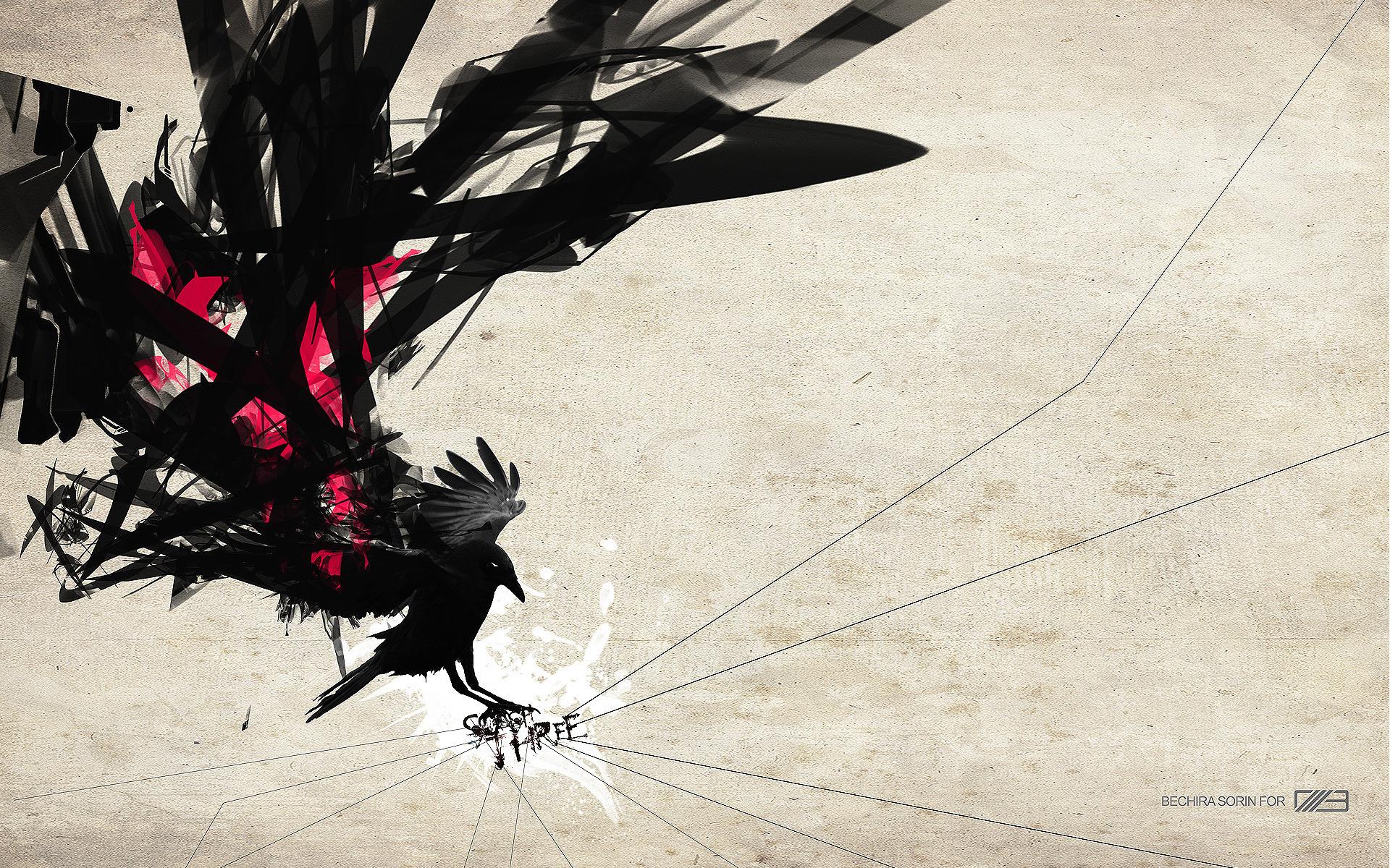 Bird Crow Raven 1920x1200